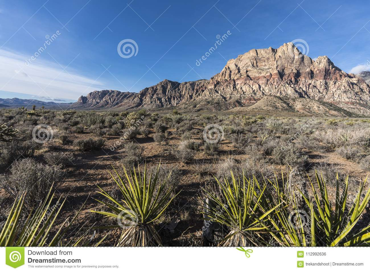 Mt Wilson and Yuccas at Red Rock Canyon Nevada