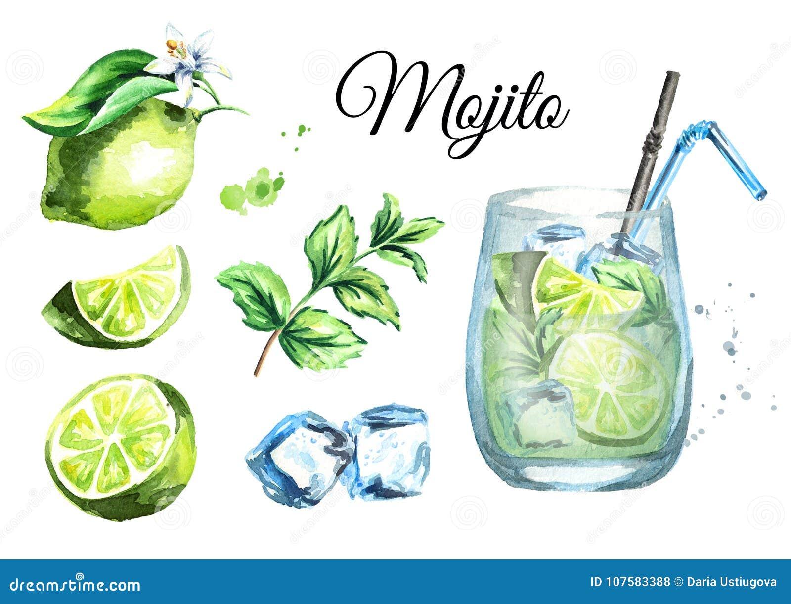 Mojito uppsättning med exponeringsglas, iskuber, limefrukt och mintkaramellen Dragen illustration för vattenfärg hand