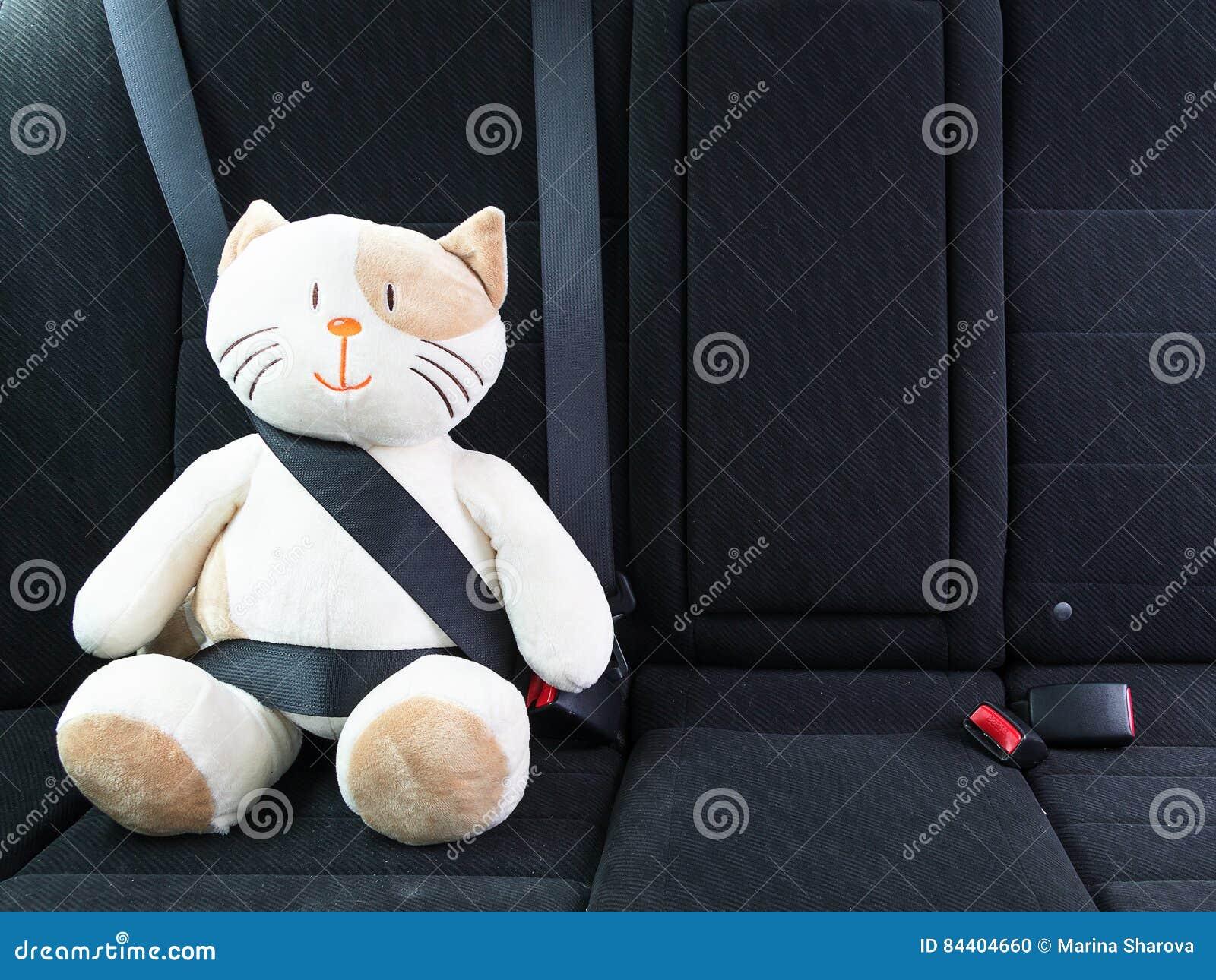 Mokietu zabawkarski kot przymocowywał z seatbelt w tylnym siedzeniu samochód, bezpieczeństwo na drodze 3d pojęcia wizerunku odoso