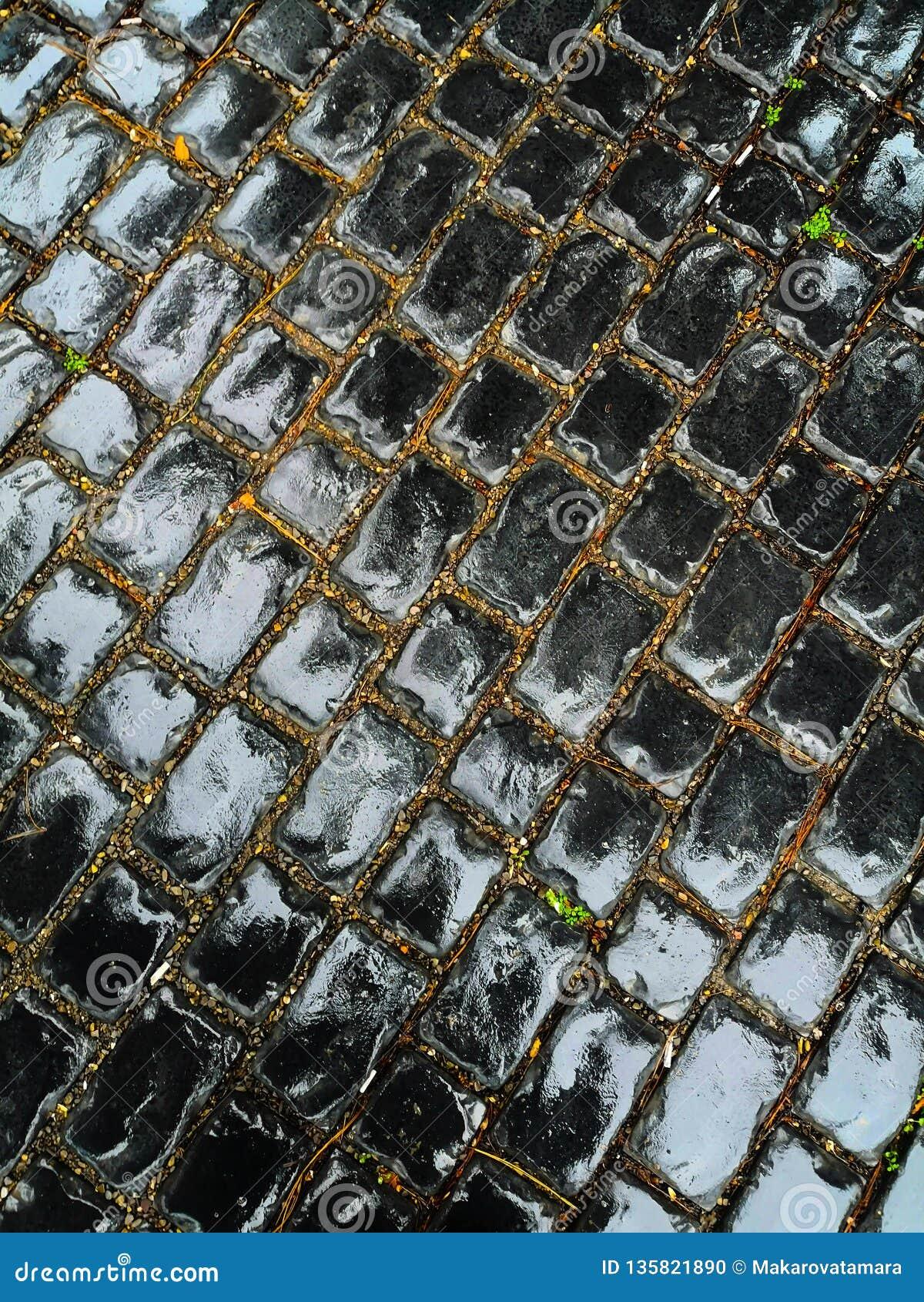 Mokry czerń mostu bruk, prostokątny kształt, 45 stopni wędkuje