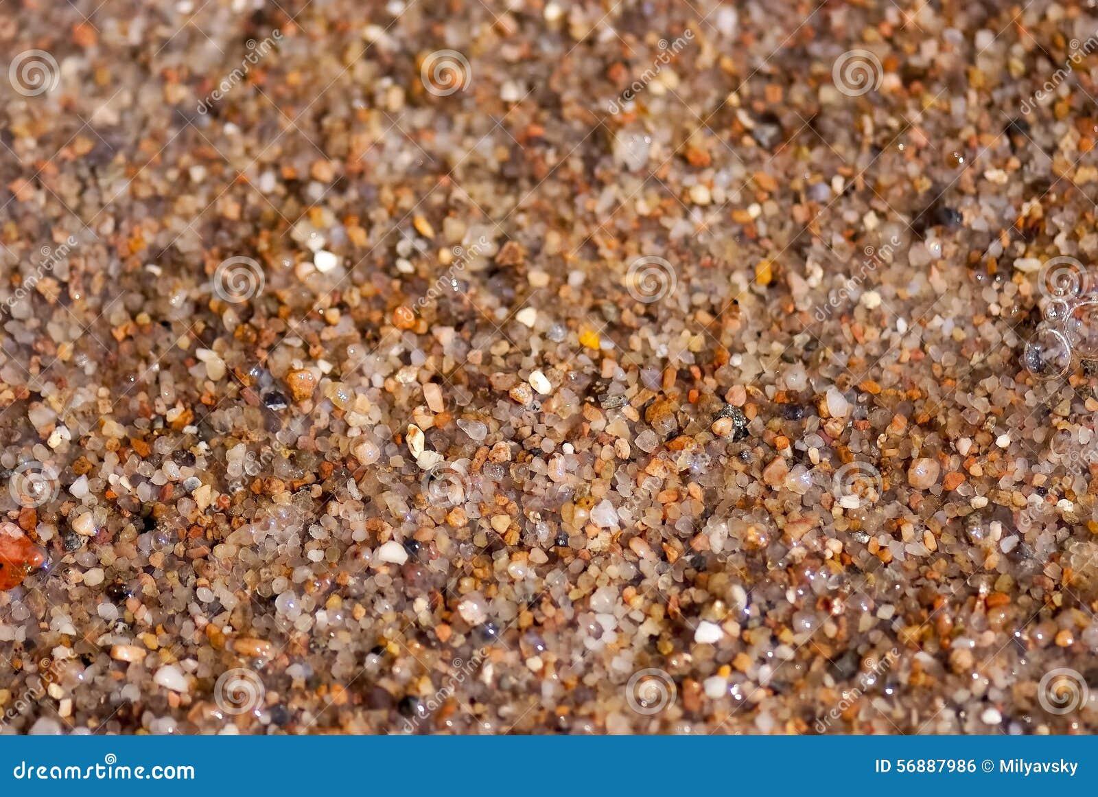 Mokry denny piasek, zamyka w górę widoku