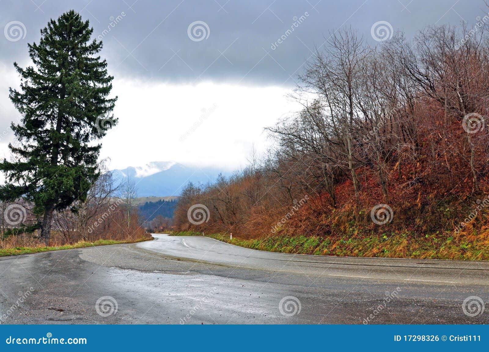 Mokry drogowy ruch drogowy
