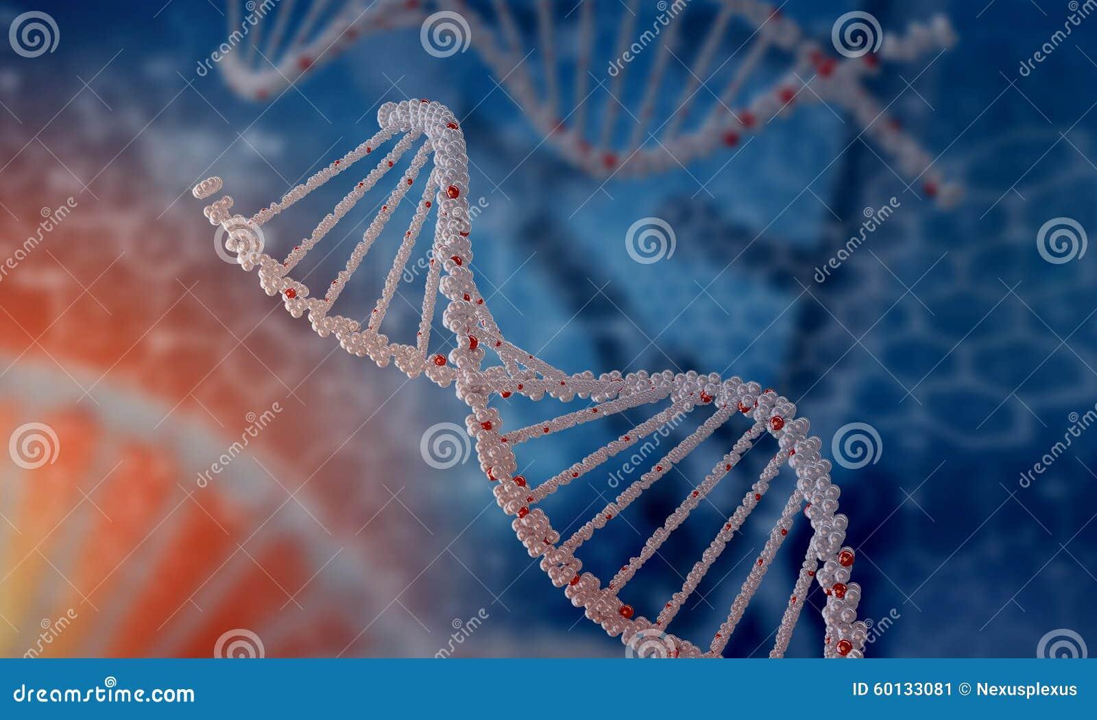 Molécule d ADN