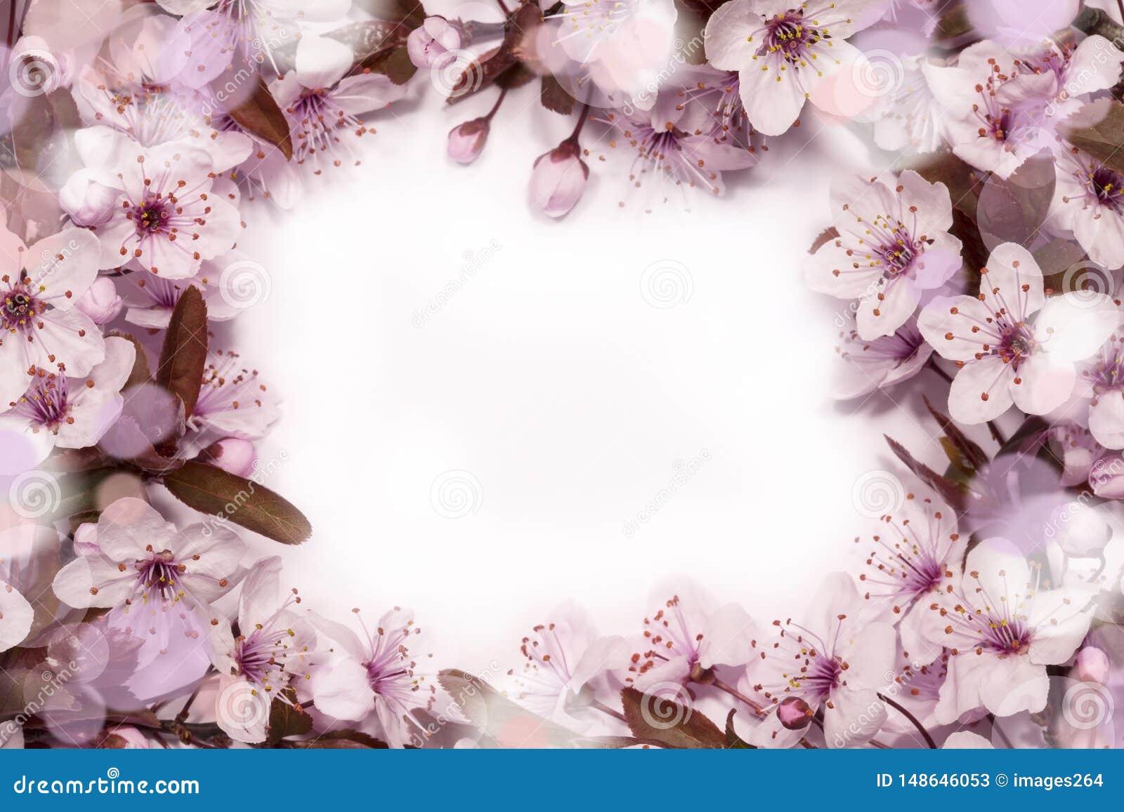 Mola Cherry Blossom