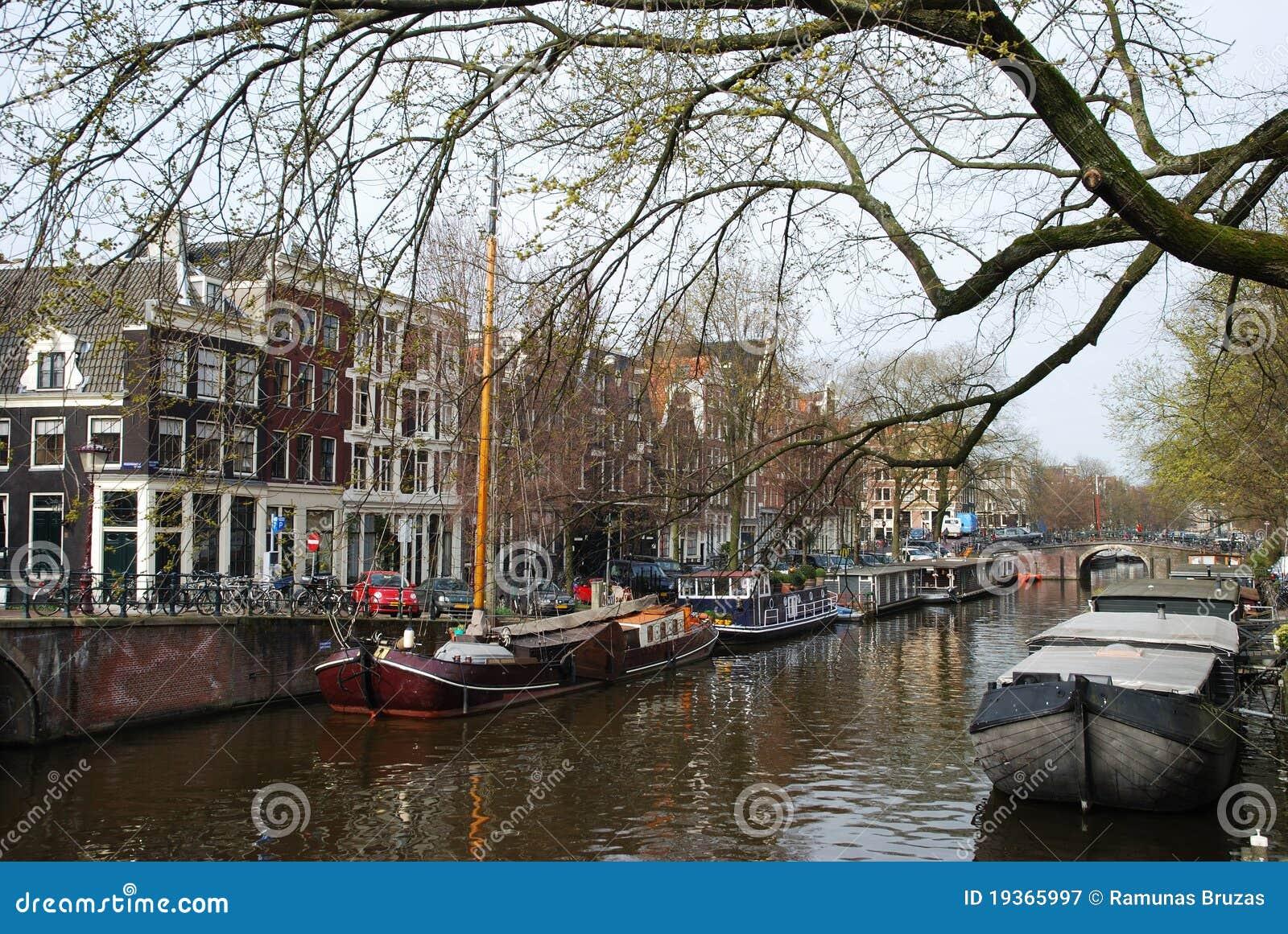 Mola em Amsterdão