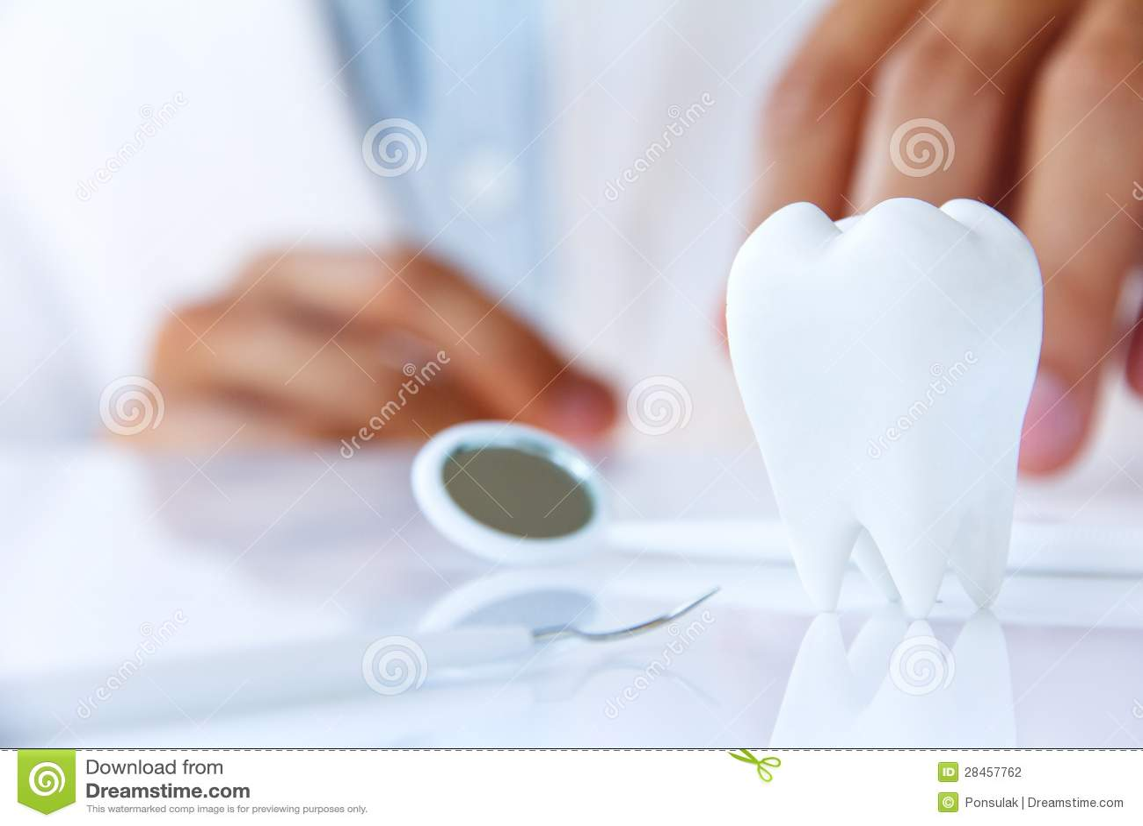 Molaire, concept dentaire