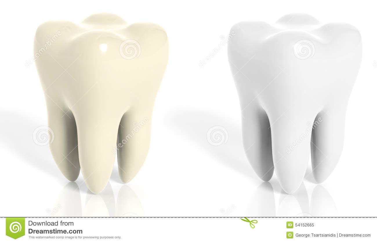 molar teeth white and yellow stock illustration illustration of