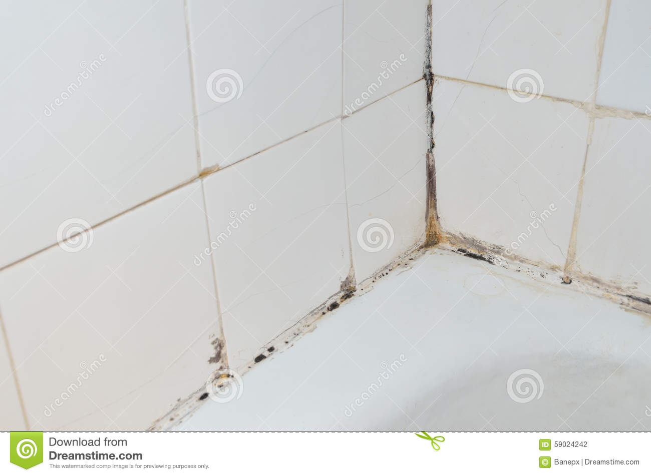 Mold In Bathroom Stock Photo Image Of Wall Dirty Douche 59024242