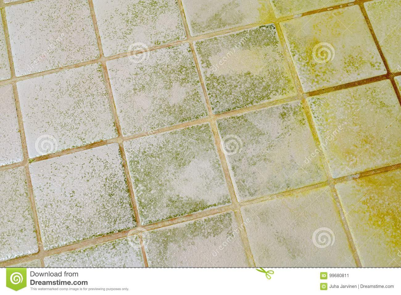 Mold On The Bathroom Tile Floor. Stock Image - Image of messy ...