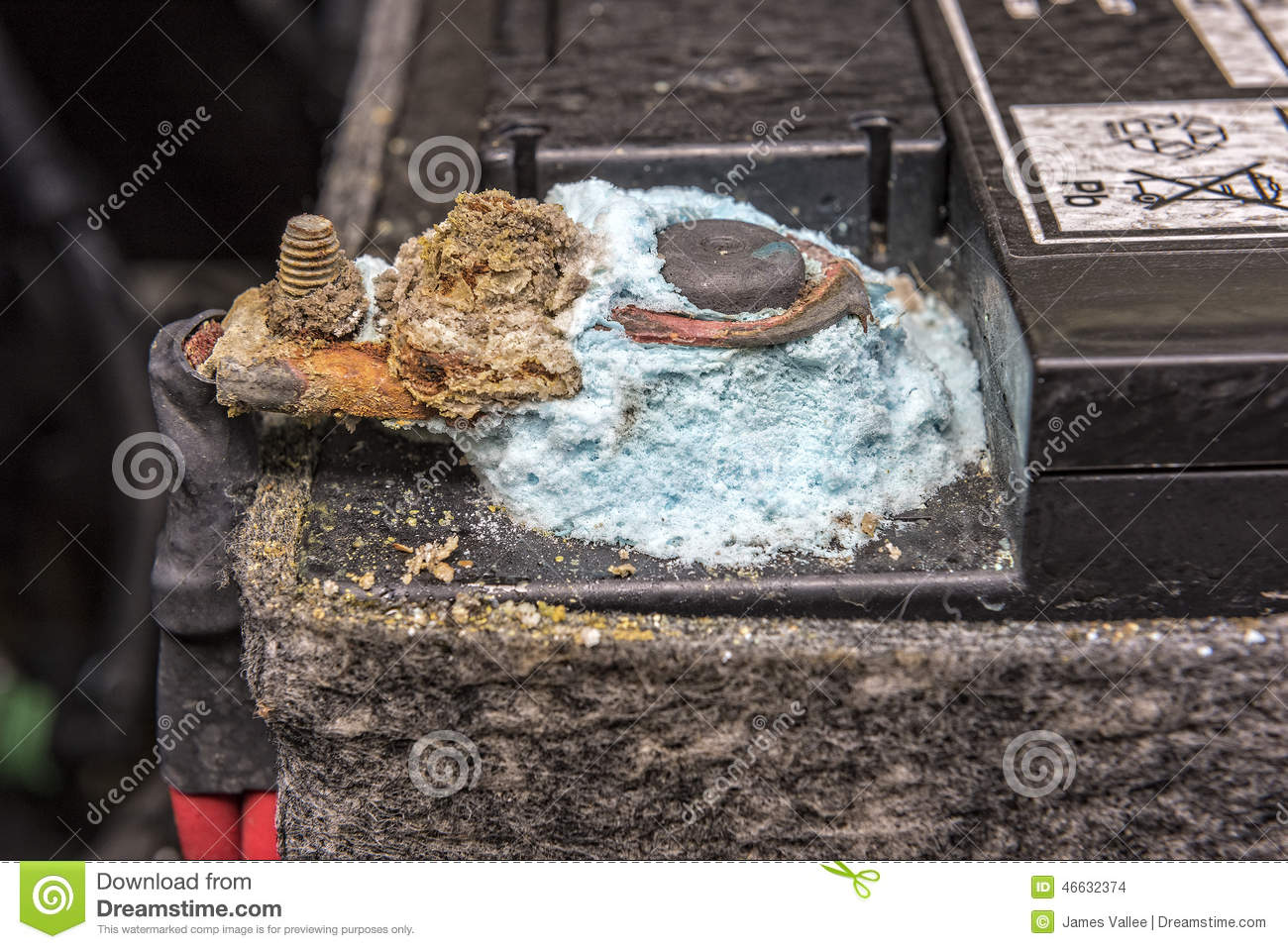 Mold On Car Battery Post Stock Photo Image Of Electrical