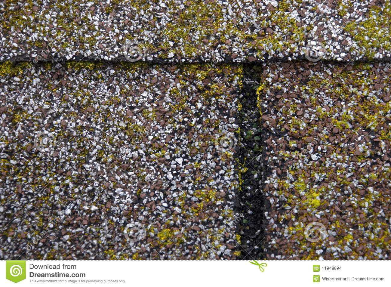 Mold Moss Damage On House Roof Shingles Stock Photo