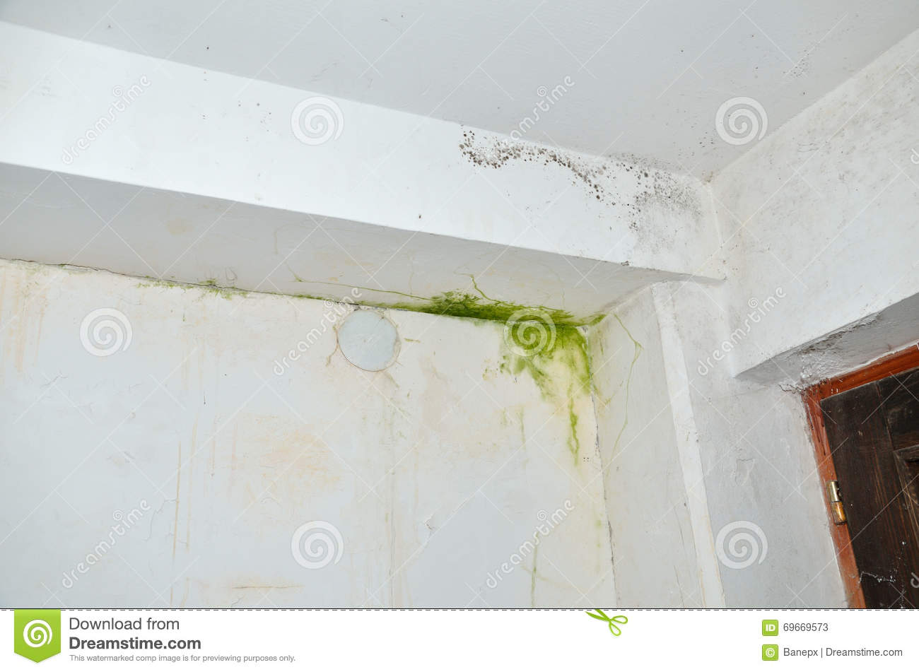 Mold On Wall And Ceiling Stock Photo Image 69669573
