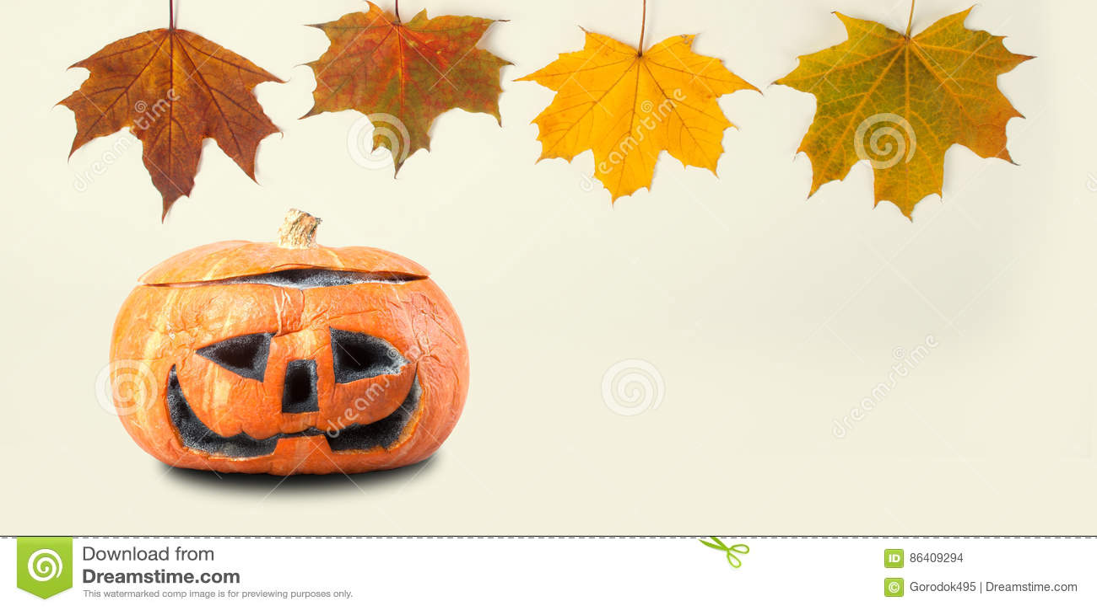 Molde da decoração de Dia das Bruxas com as folhas de bordo coloridas da abóbora alaranjada Opinião assustador do macro do objeto