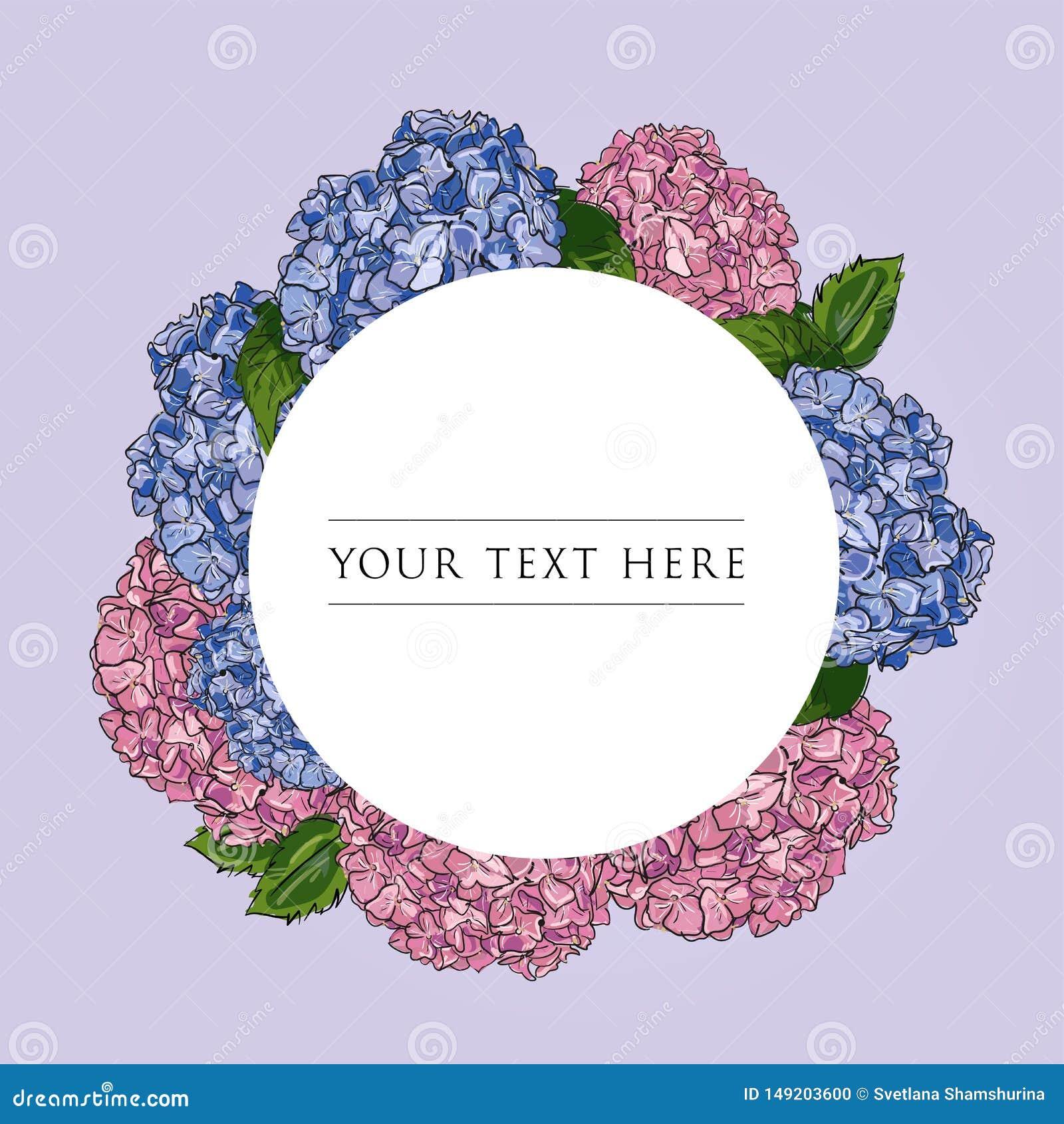 Molde do design floral da etiqueta Rosa tirado mão do esboço da ilustração do vetor e hortênsia azul no quadro redondo no fundo b