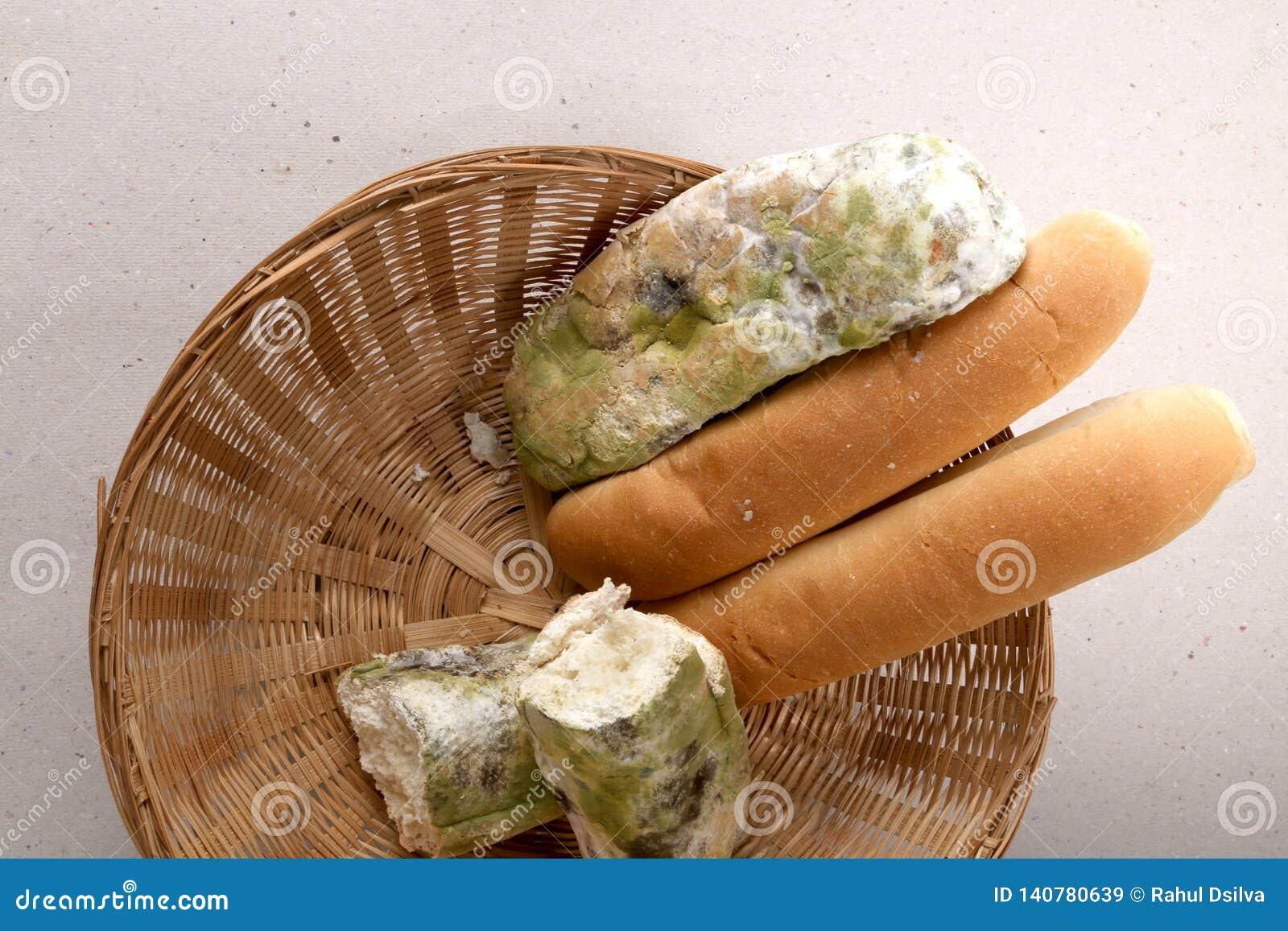 Molde no pão na cesta O melhor antes da data tem expirado há muito tempo com este alimento mofado Fundo isolado