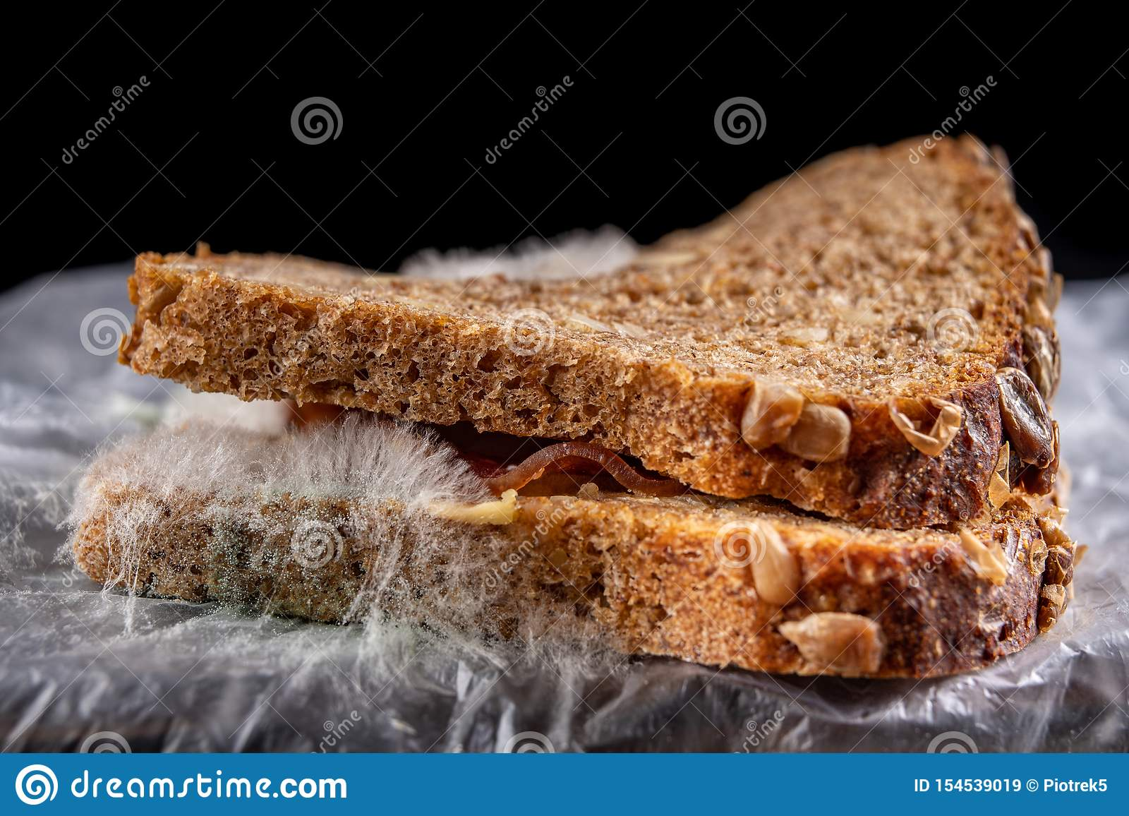 Moldy σάντουιτς με το καπνισμένο κρέας σε μια πλαστική τσάντα Σκοτεινό ψωμί με τα σιτάρια που καλύπτονται με την άσπρη φόρμα