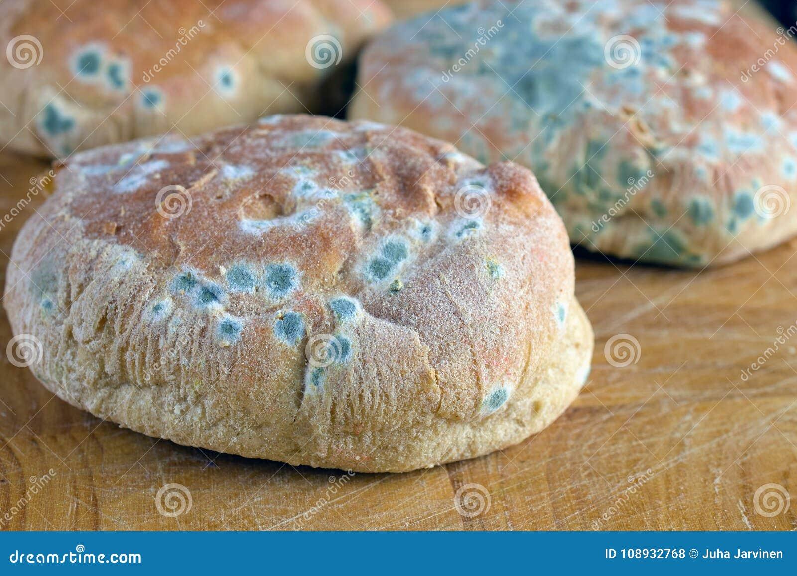 Mold on bread rolls