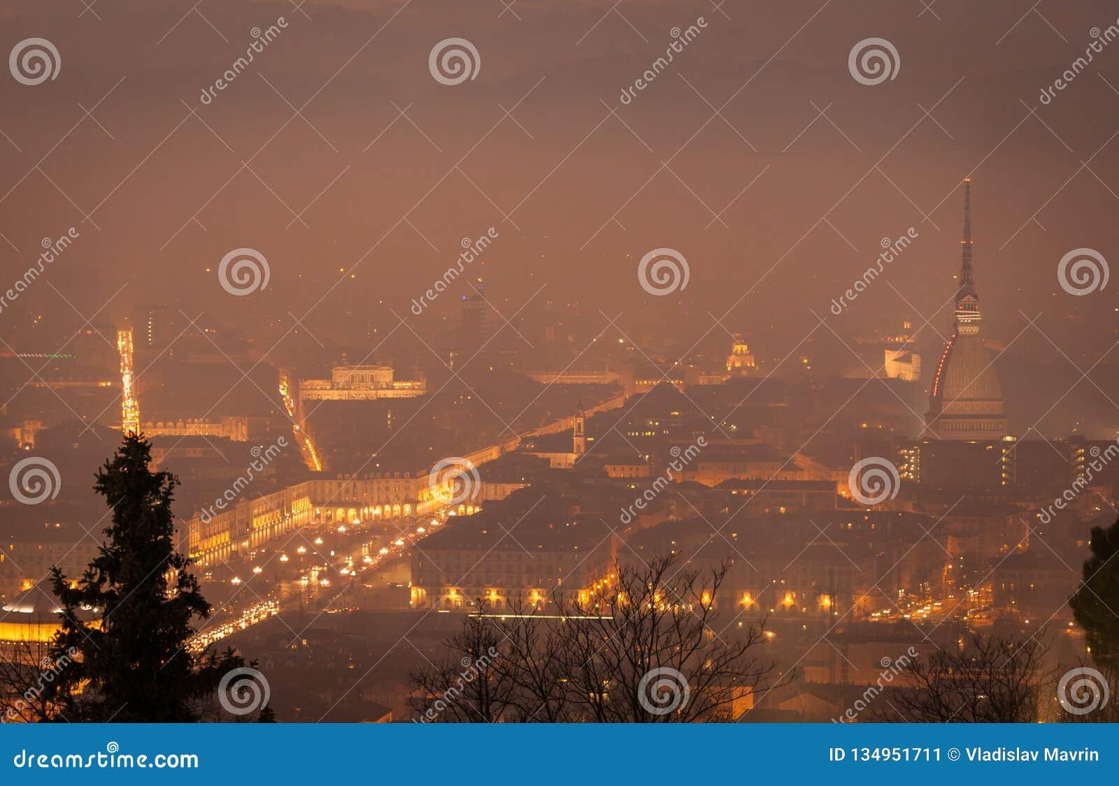Mole Antonelliana View