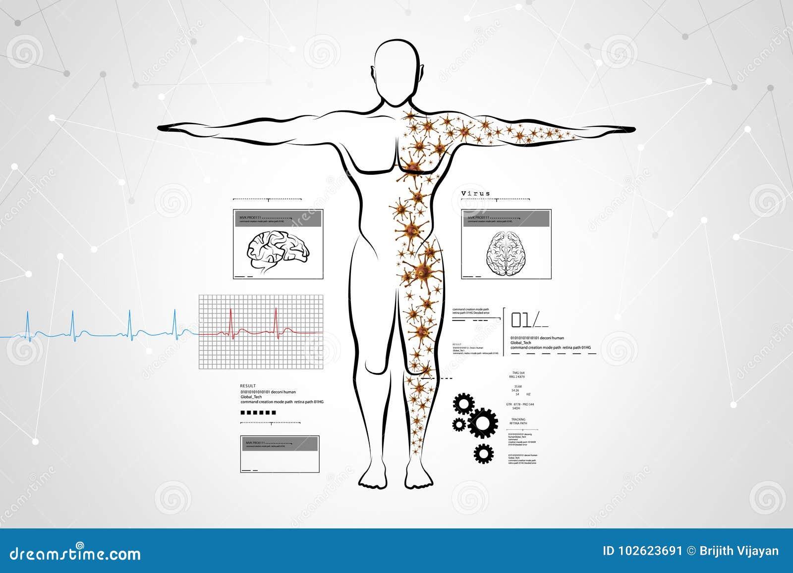 Molecular Structure Of Human Body Stock Illustration Illustration