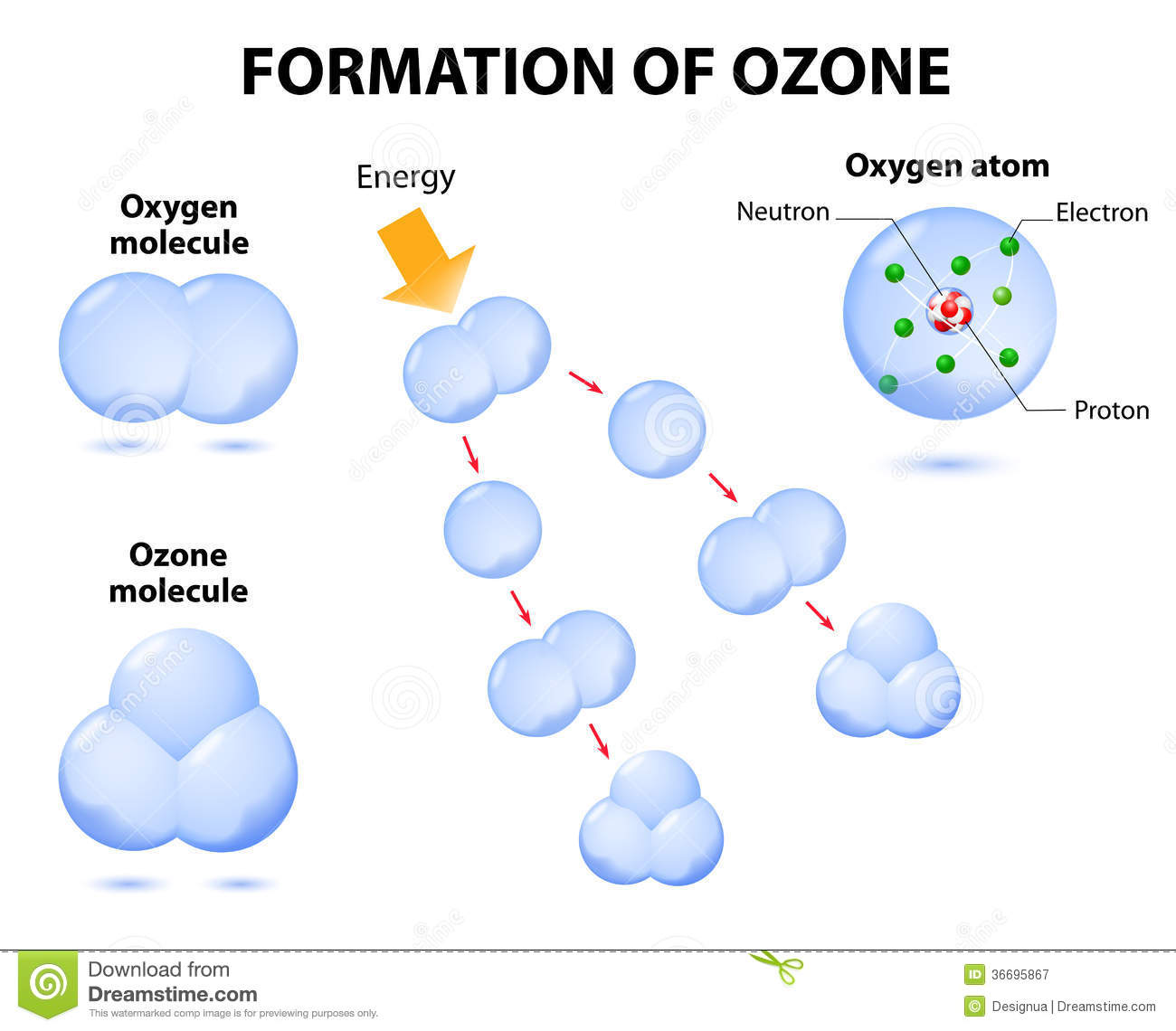 Oxygen Cycle In Nature Molecules Ozone And Ox...