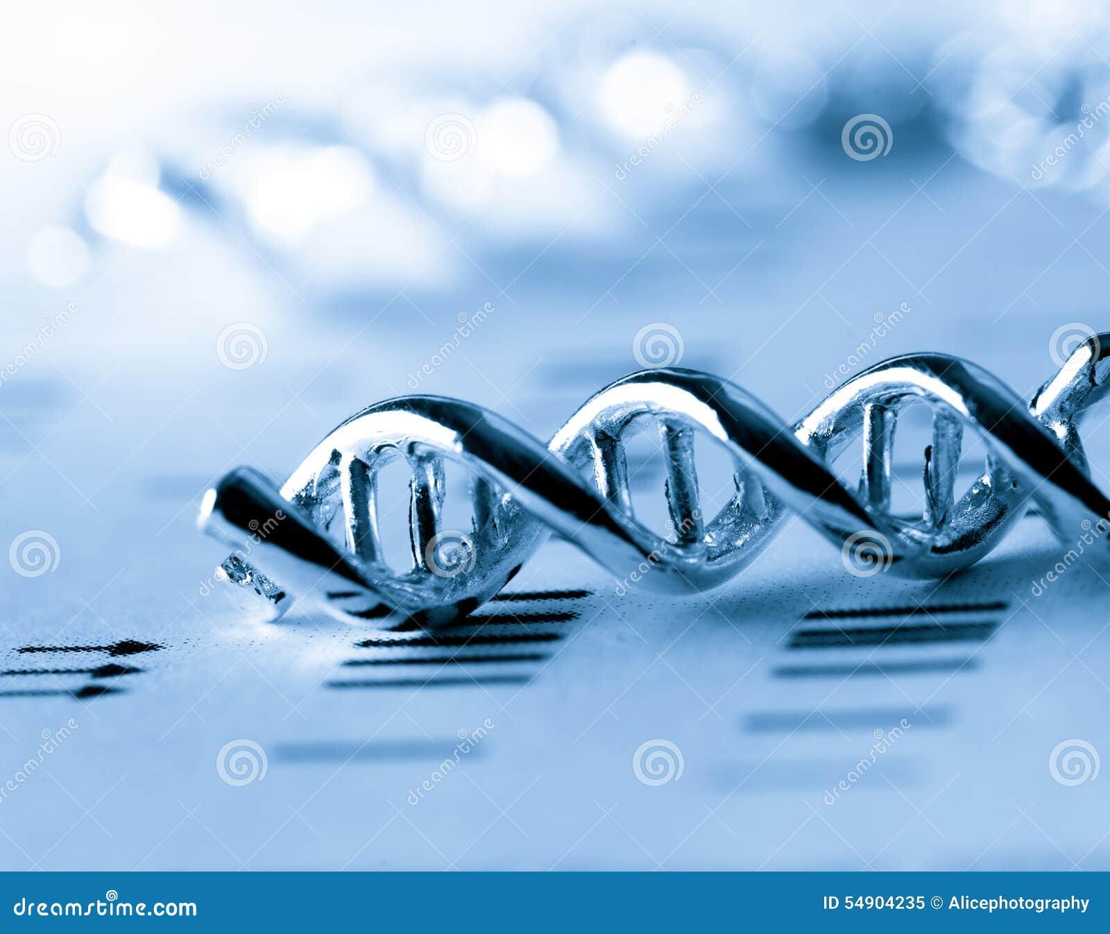 Molekylärt, DNA:t och atomen modellera i vetenskapsforskninglabb
