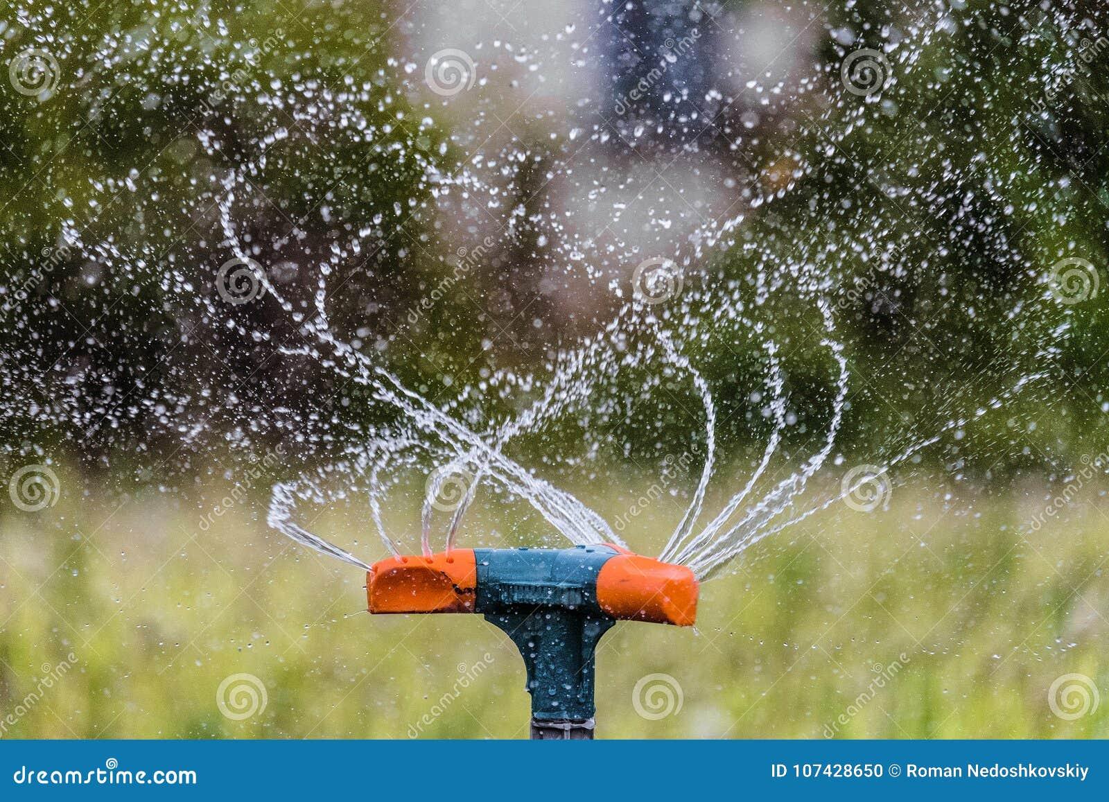 Molhando o jardim usando um sistema de extinção de incêndios da rotação Close-up de jardinagem do sistema de irrigação
