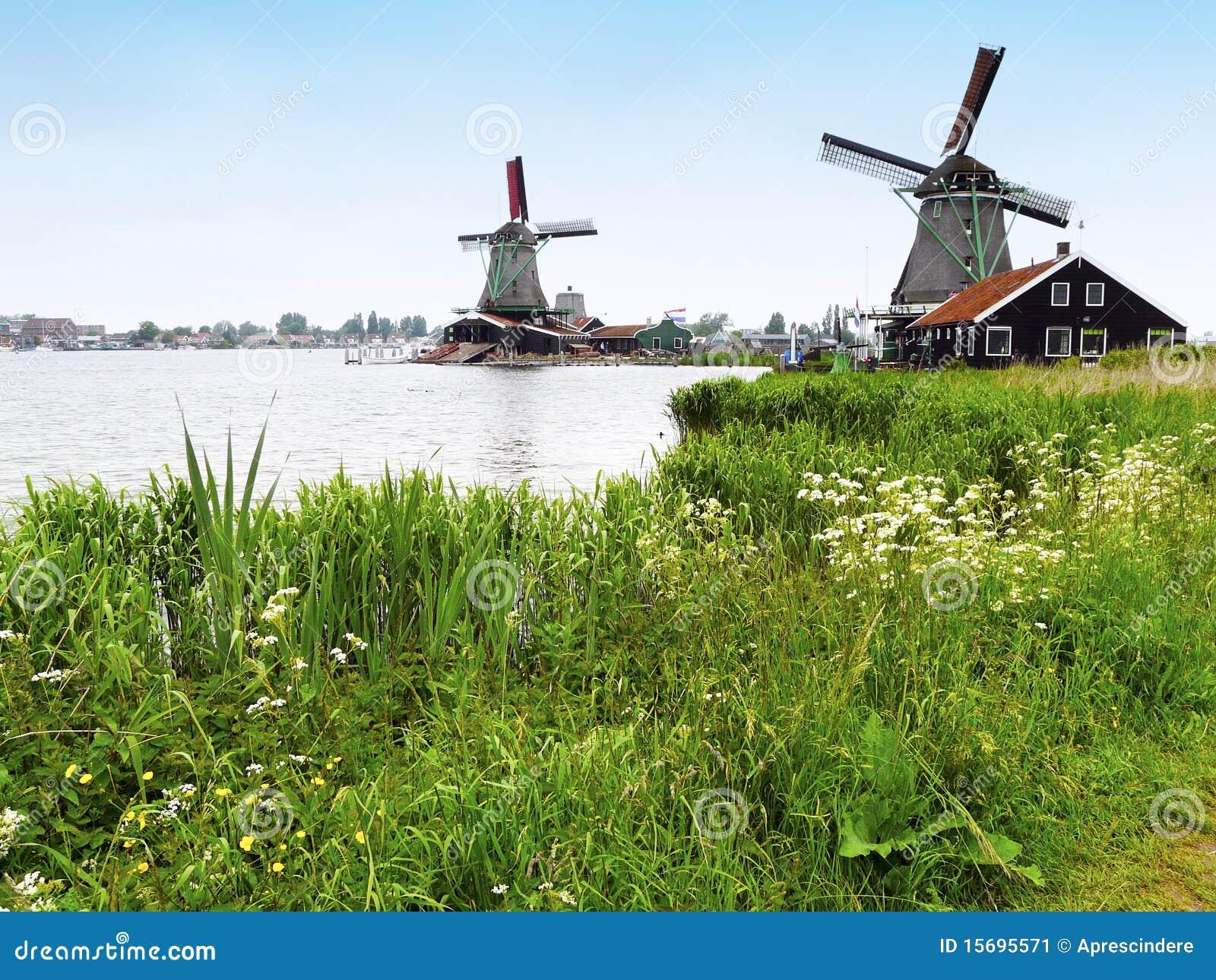 Molinoes de viento holandeses