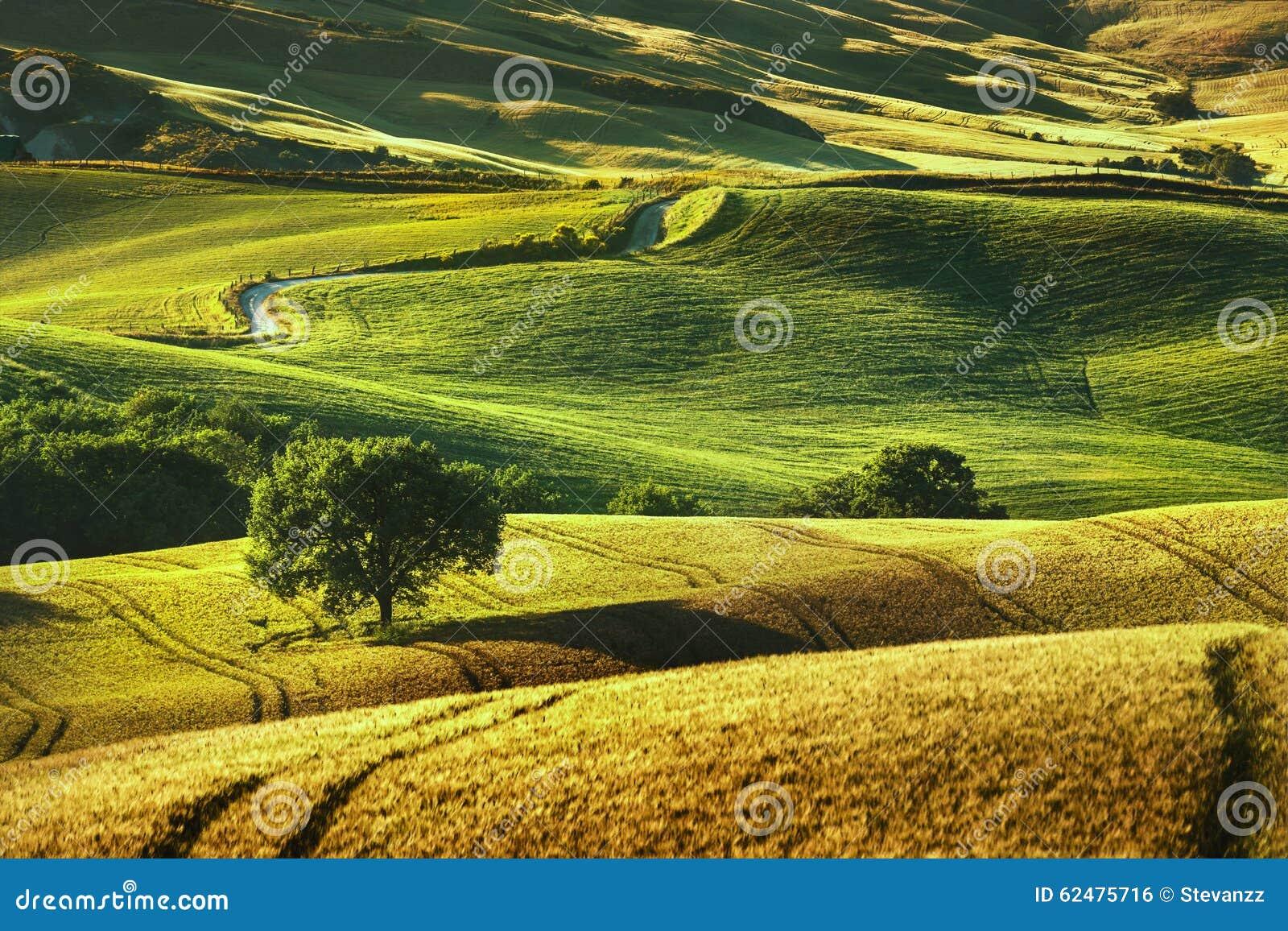 Molla della Toscana, Rolling Hills sul tramonto Landscap rurale di Volterra