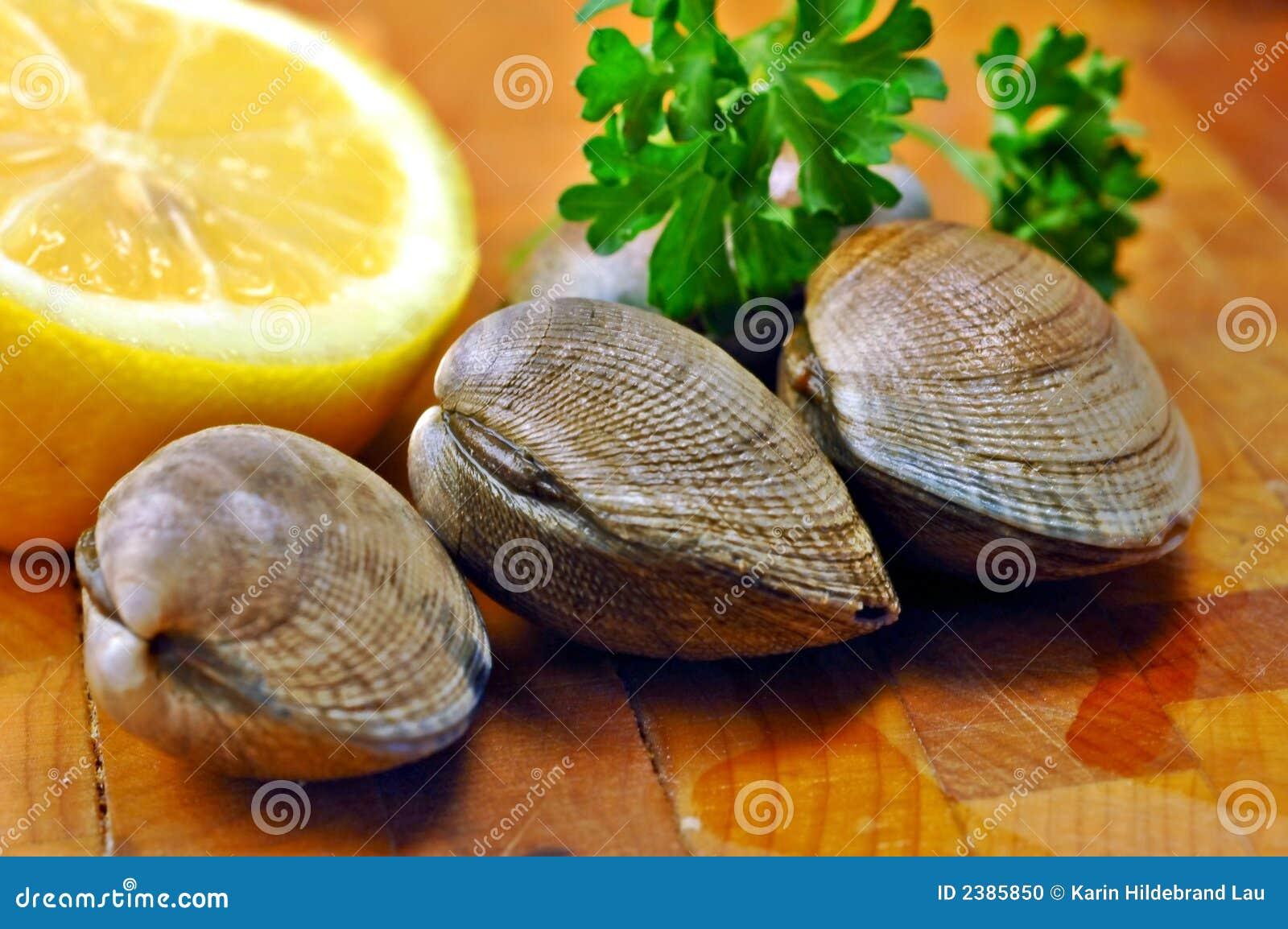 Molluschi grezzi