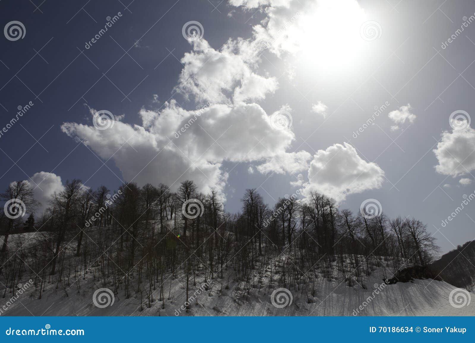 Molnig himmel och snö