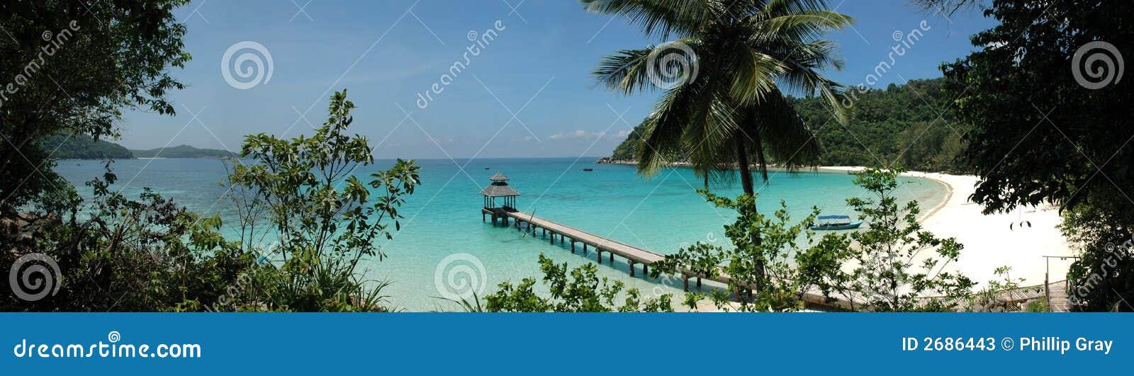 Molo tropicale della spiaggia