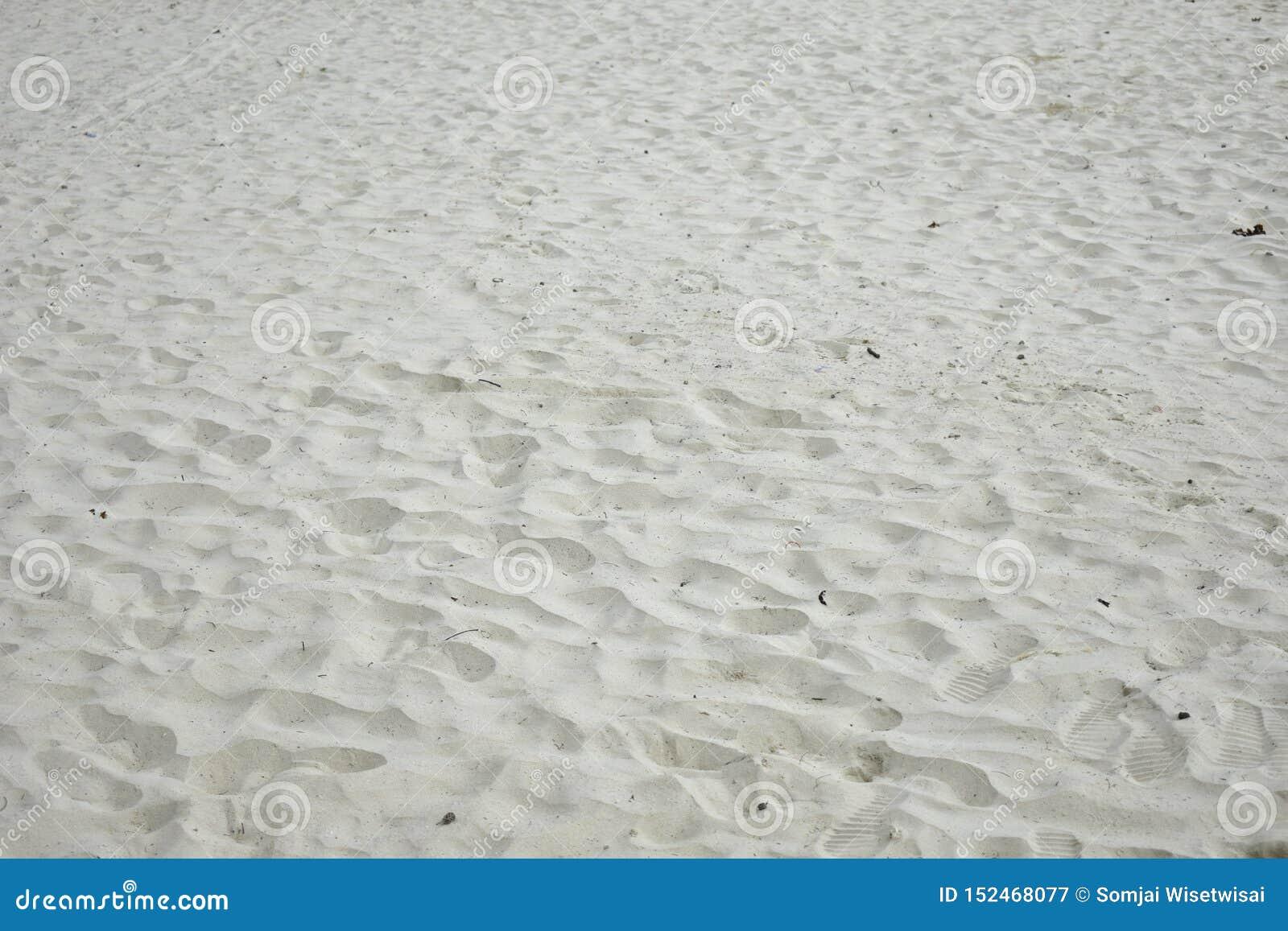 Molte orme sulla spiaggia