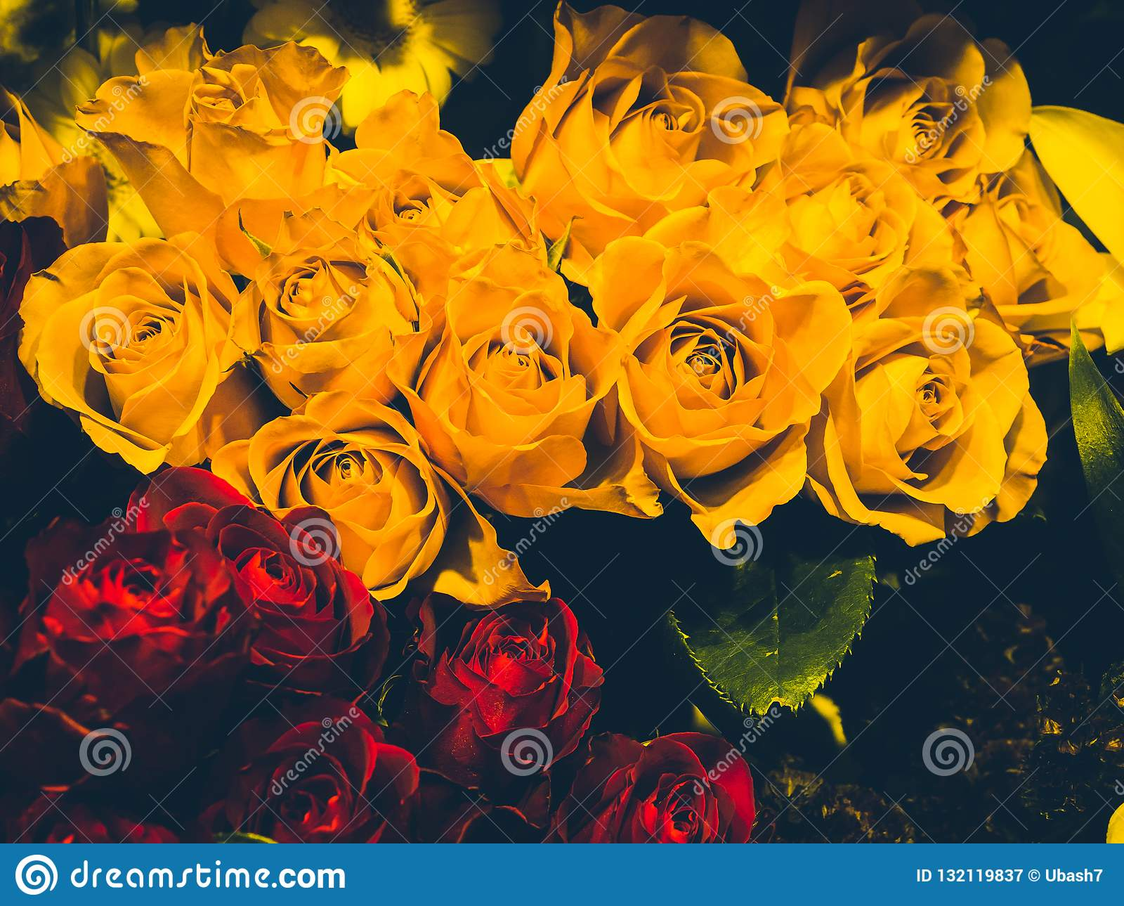 Molte rose gialle e rosse