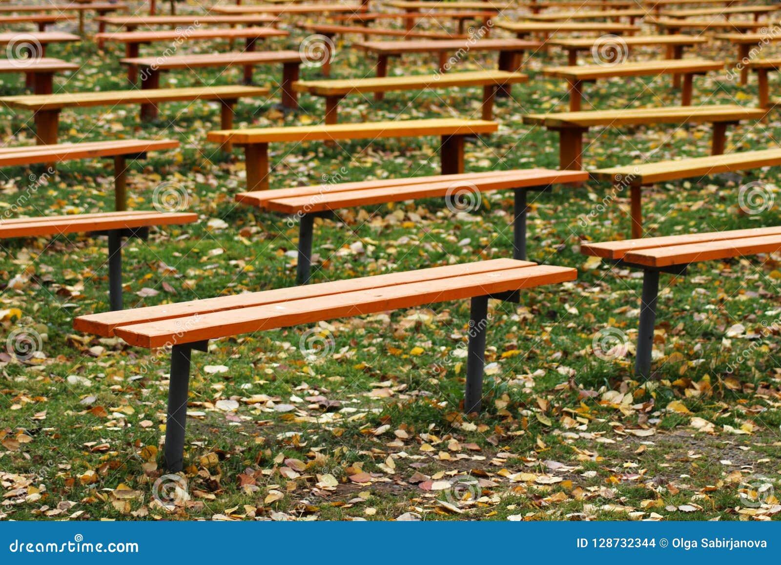 Molti banchi di legno nel parco
