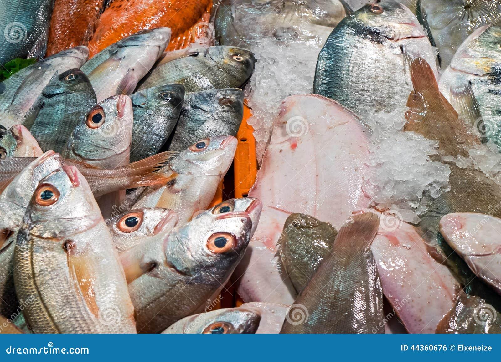 Molti pesci differenti ad un mercato