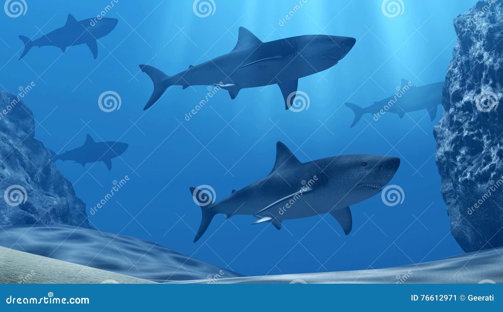 Moltitudine di squali subacquei con i raggi e le pietre del sole in mare blu profondo