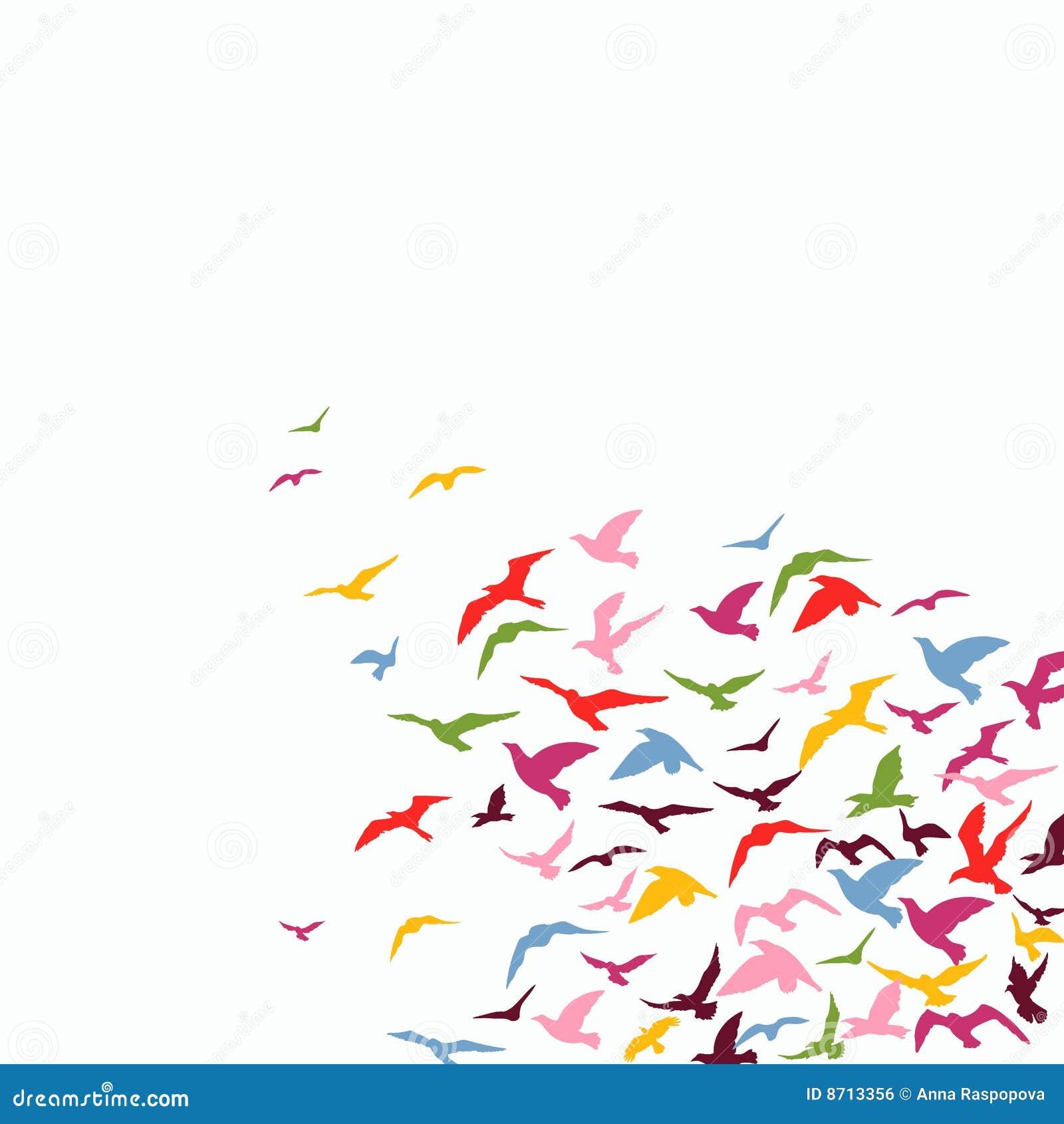 Moltitudine di uccelli