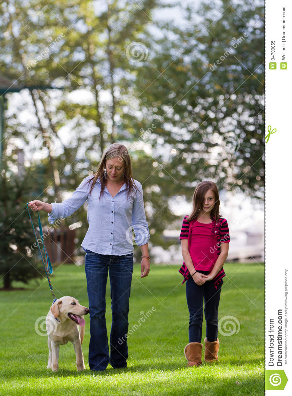Golden Retriever Mother And Daughter Stock Photos - Image ... |Dog Mom And Daughter