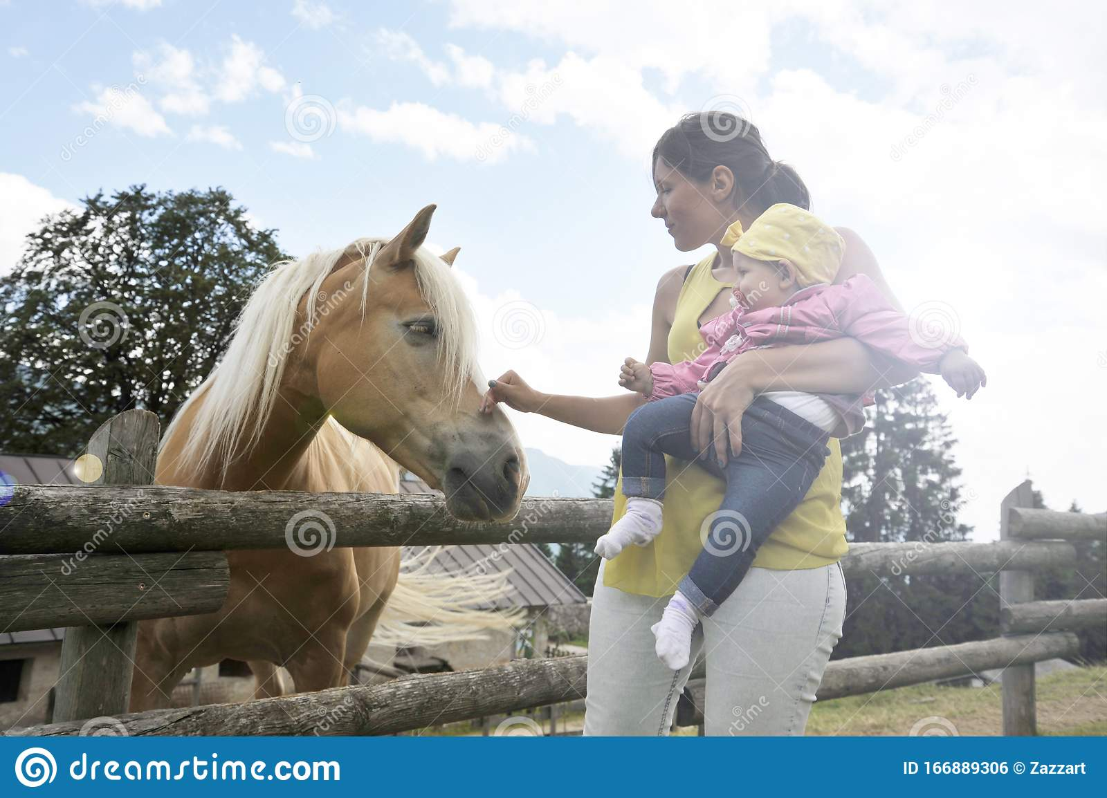 Mom With Her Daughter Are Meeting A Horse In The Educational Farm Happy Childhood Concept Pet Therapy Concept In Countryside Stock Photo Image Of Farm Equine 166889306