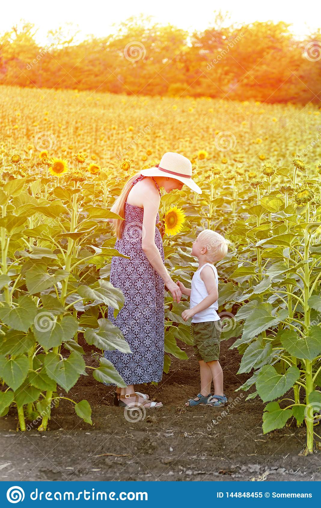 Mom and little son are standing against the blooming field of sunflowers. Vertical frame
