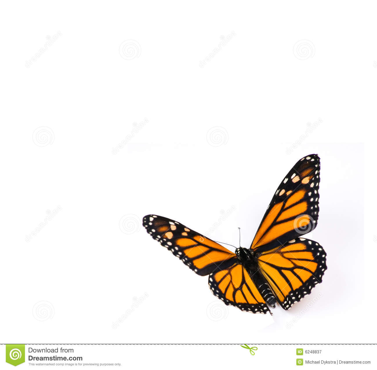 butterfly dating service On bumble, women make the first move we're leveling the playing field and changing the dynamics of dating we believe relationships should begin with respect and equality.