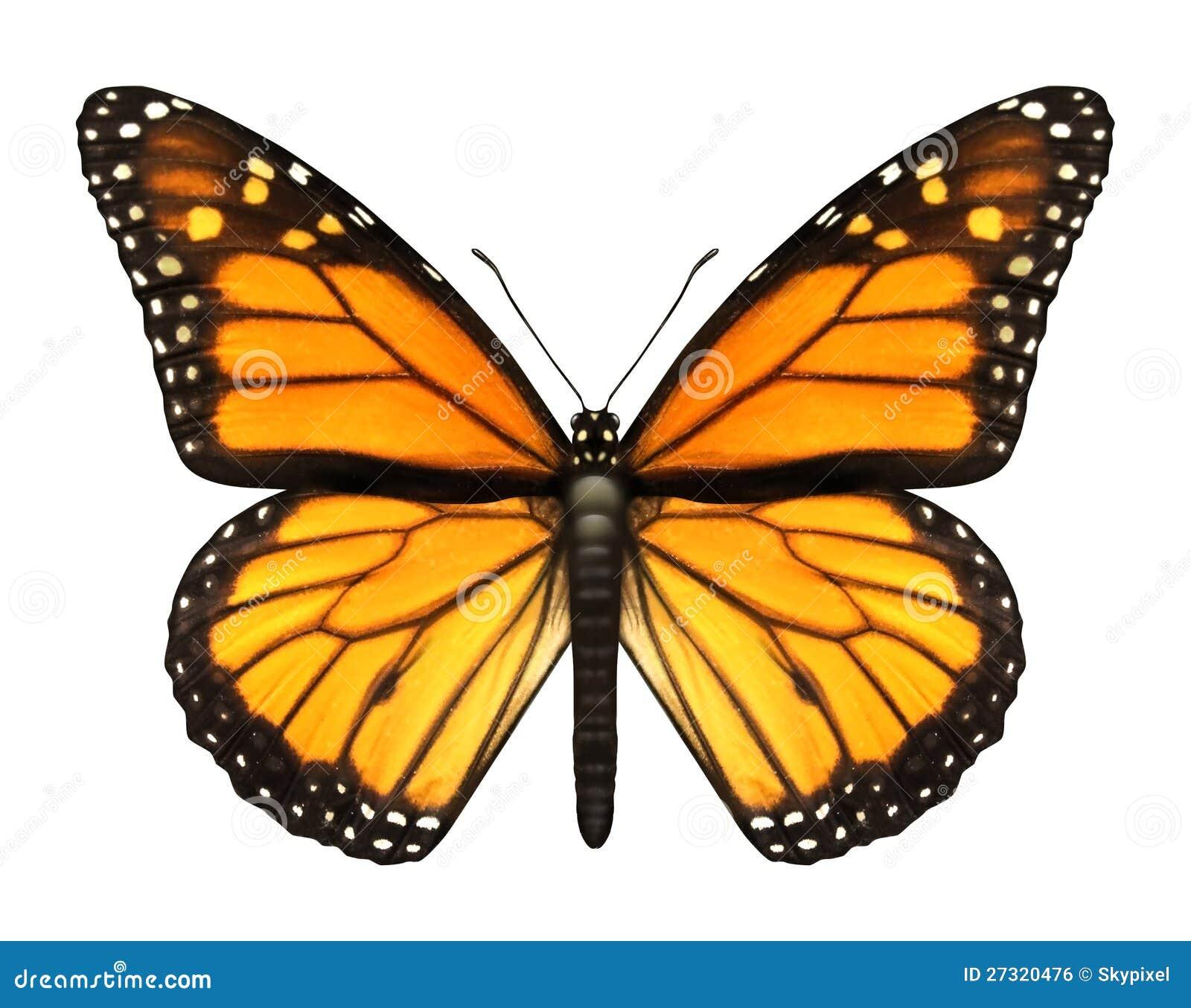 Monarkfjäril