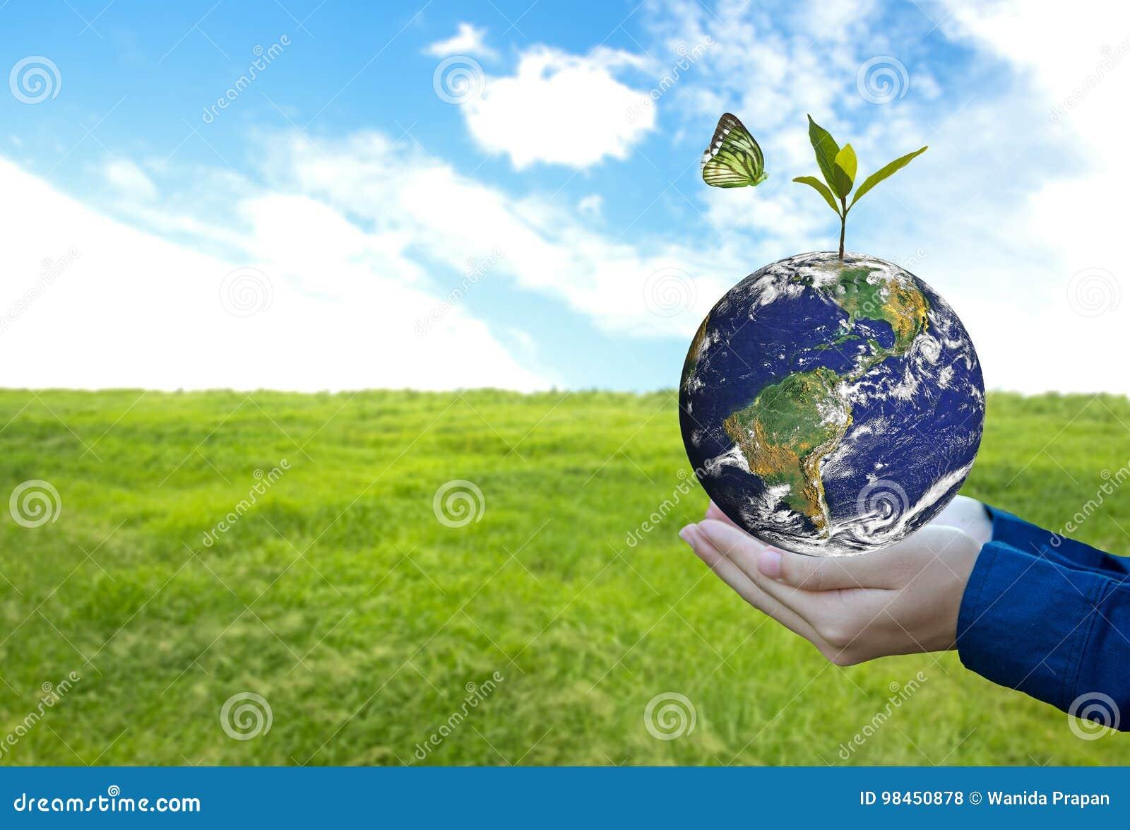 Mondo verde con la farfalla e lasciare in mano dell uomo, fondo verde,