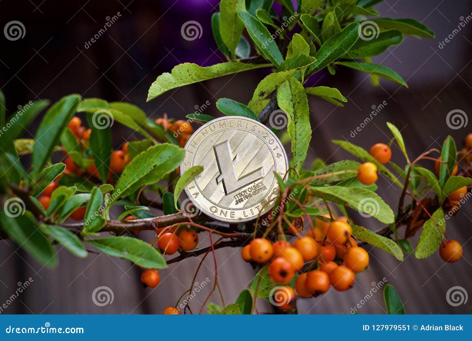 Moneda de Litecoin en el árbol