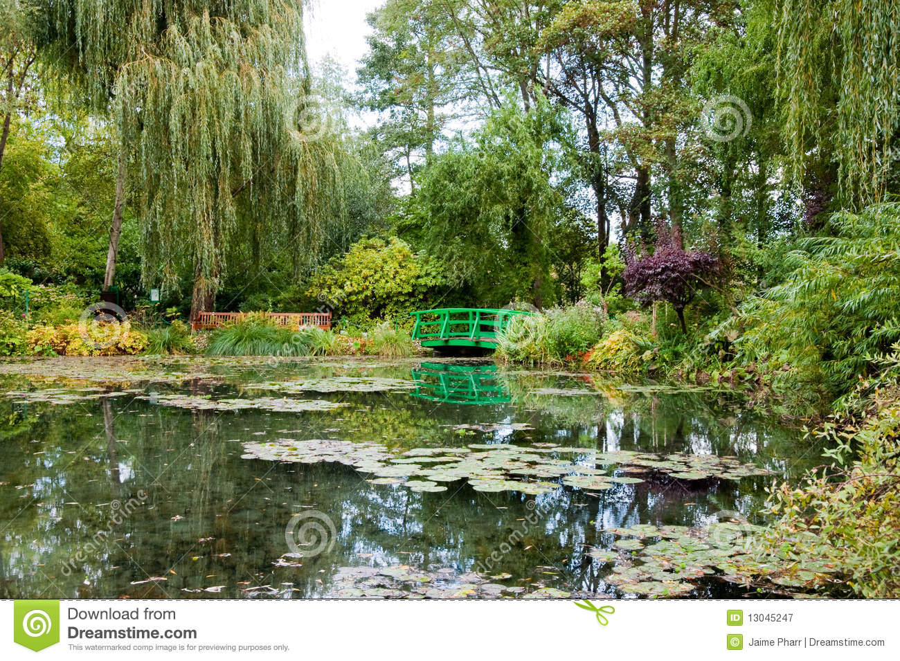 Monet s garden and pond
