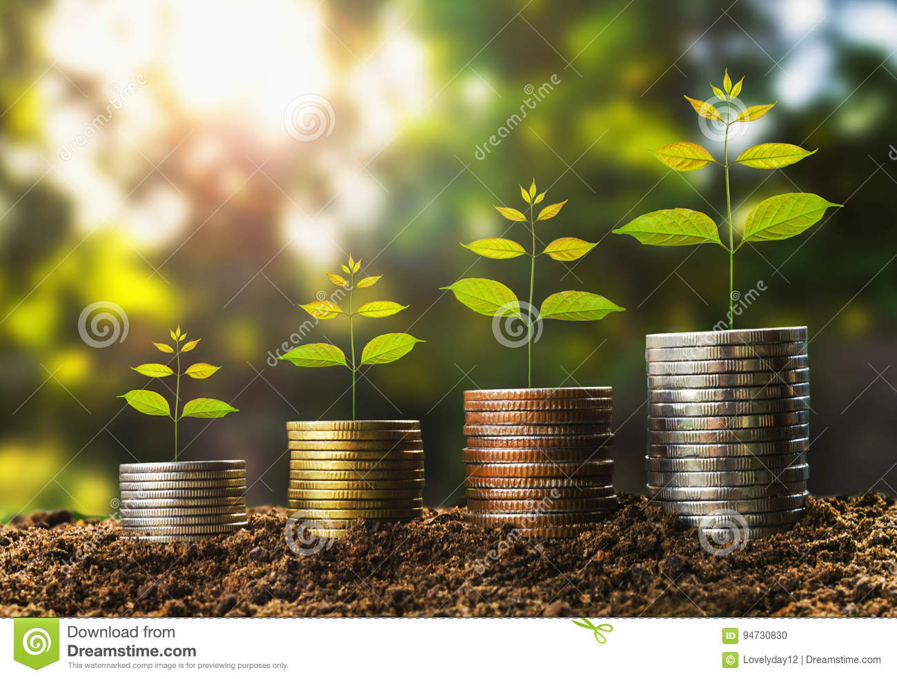 money growht in soil and tree concept , business success finance