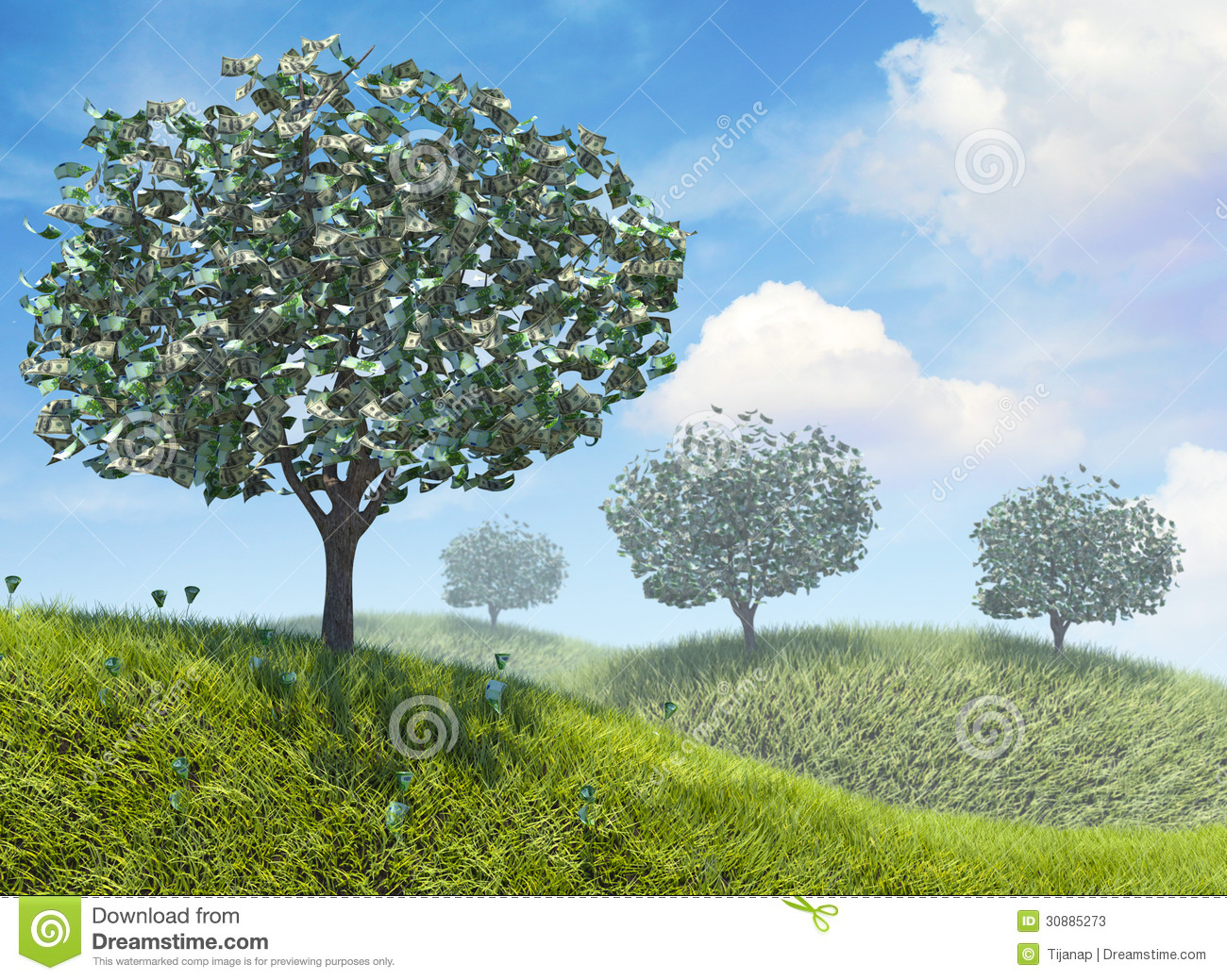 Money Growing On Trees Stock Photos