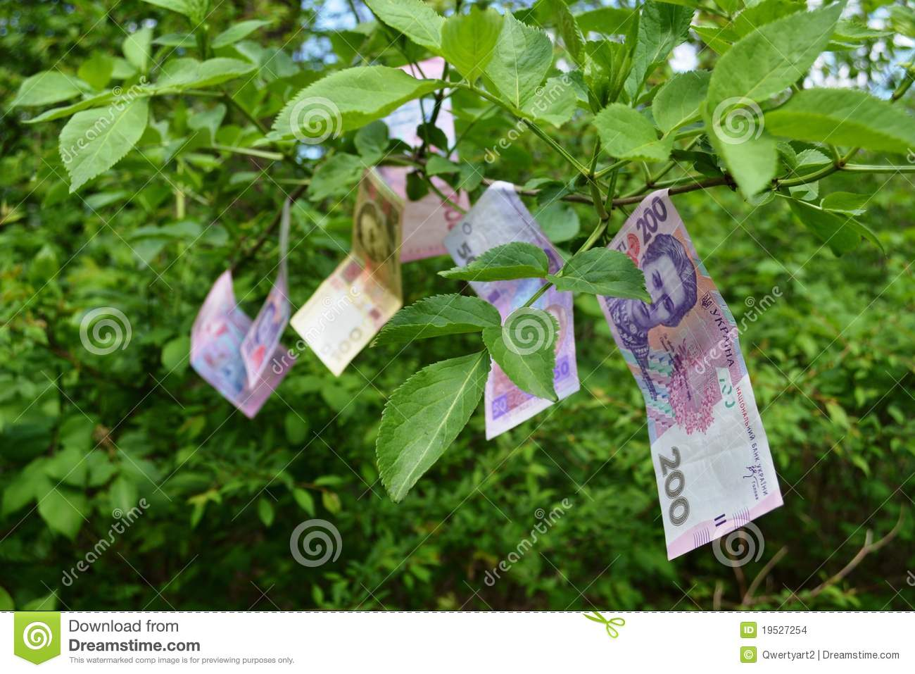 Download Money Grows On Trees Stock Photo Image Of Currency Price