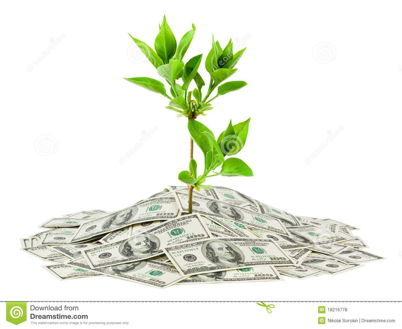 Money And Plant Royalty Free Stock Photos Image 18216778