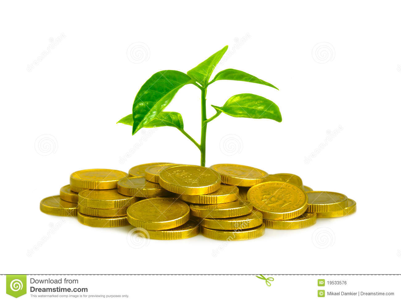 Money And Plant Stock Photo Image Of Finance Concept
